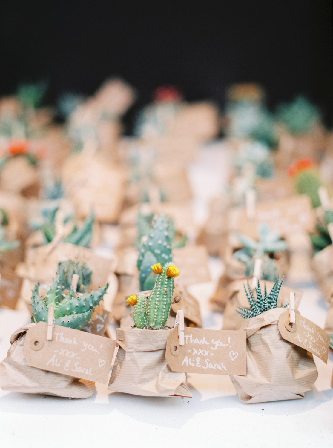 Mini Cactus Wedding Favors in Kraft Paper Bags
