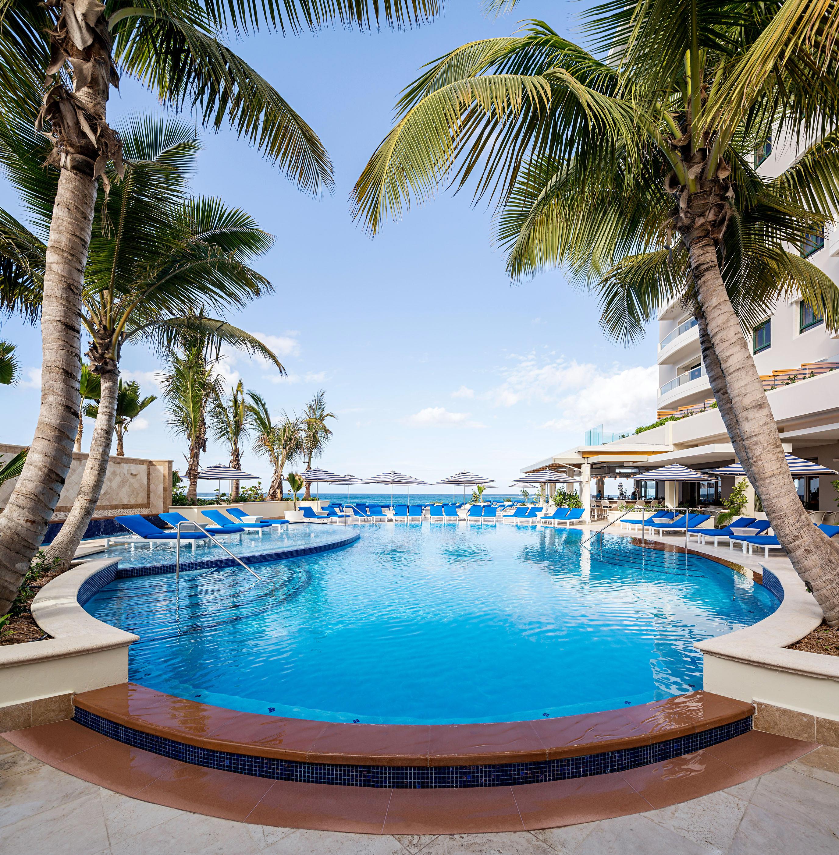 pool palm trees