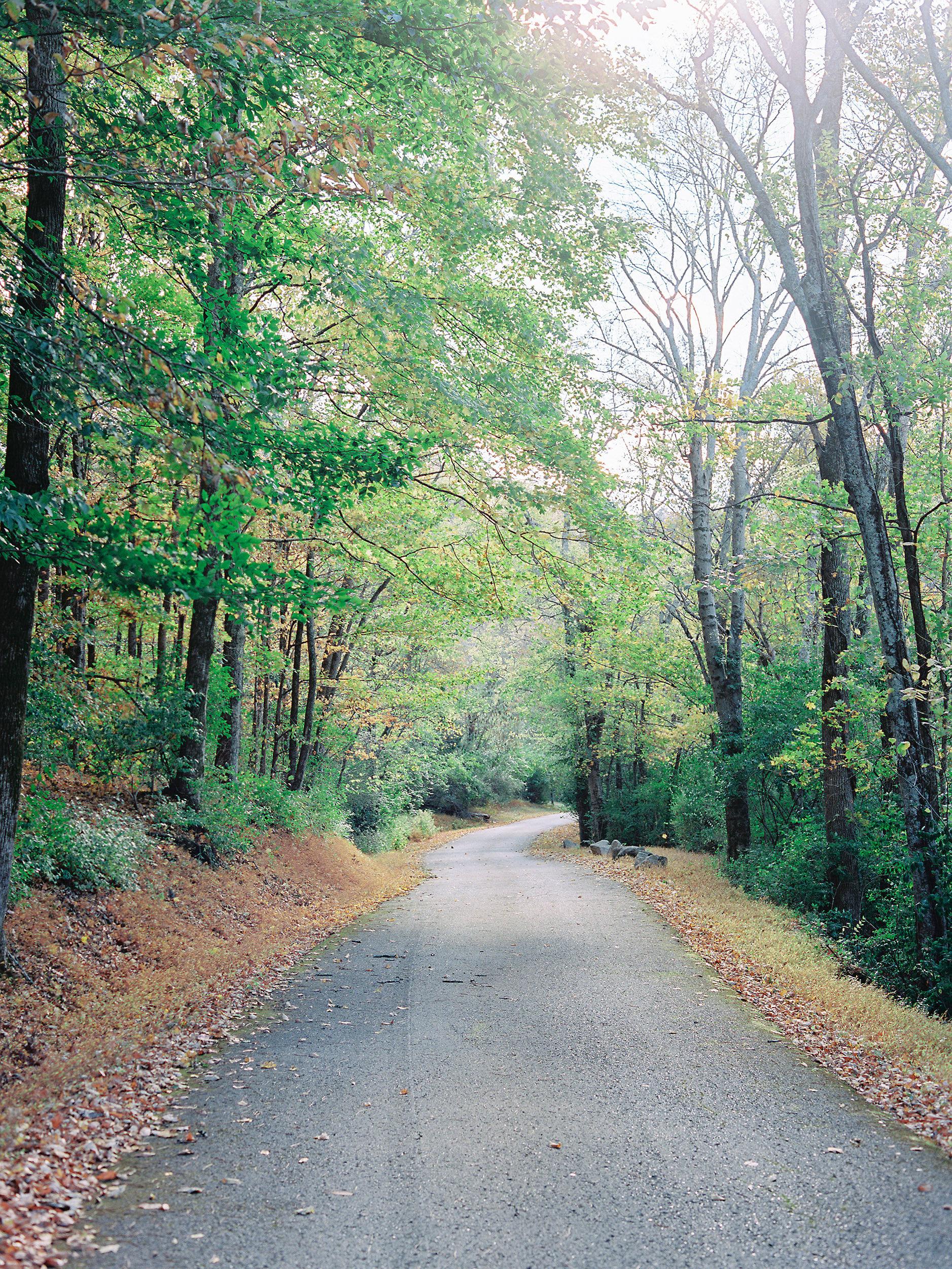 wedding road