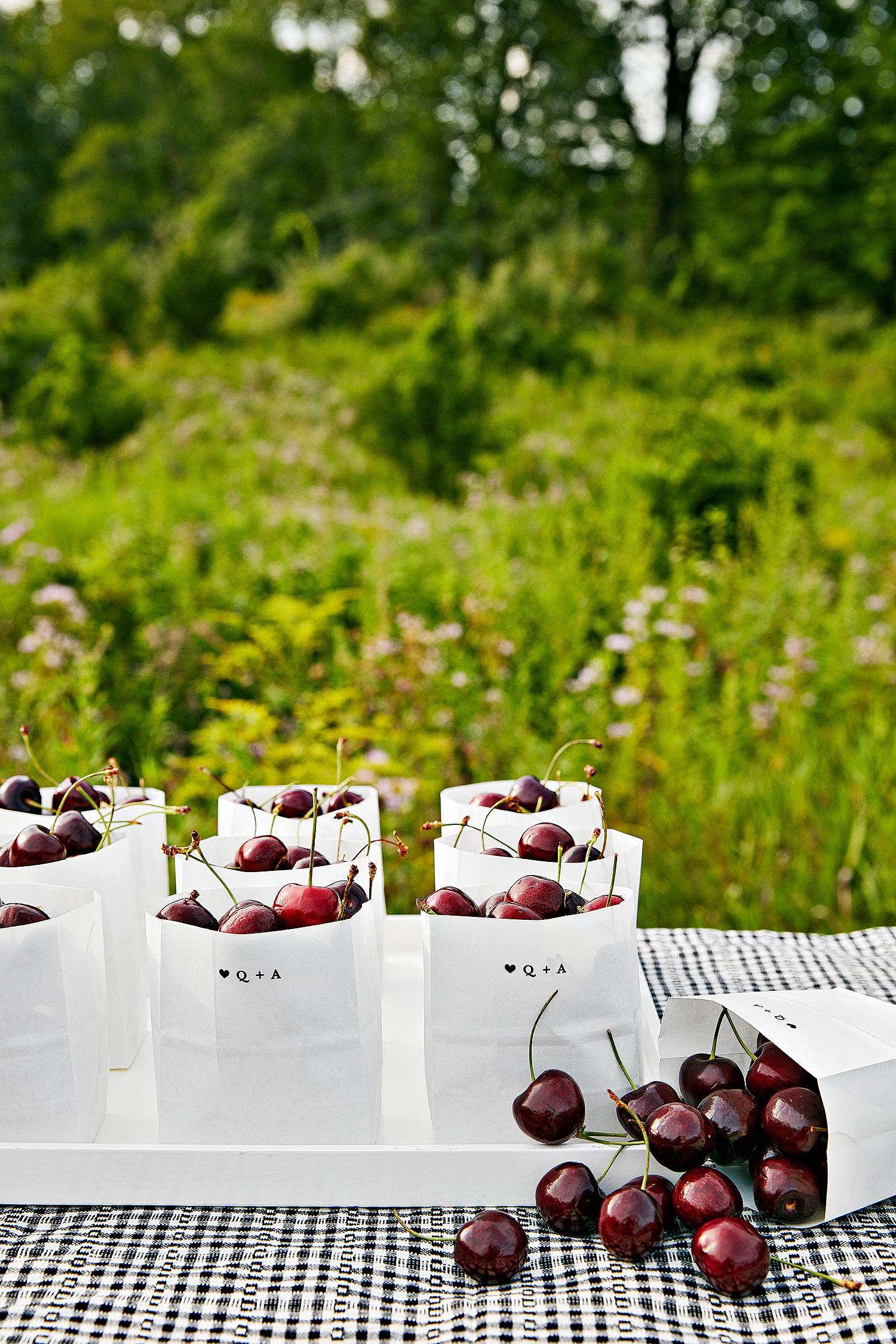 avril quy wedding new york cherry favors