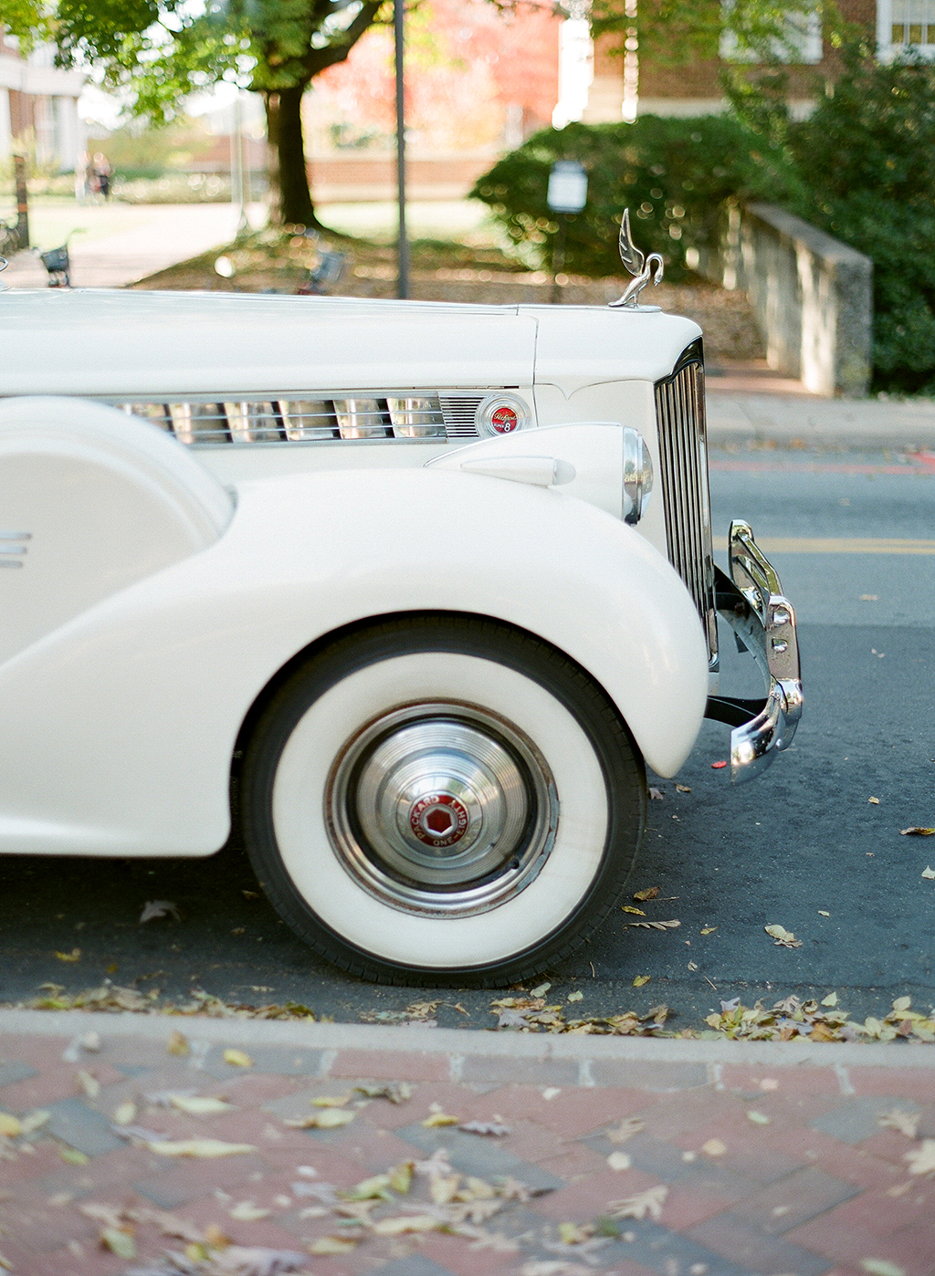 anne and staton wedding car