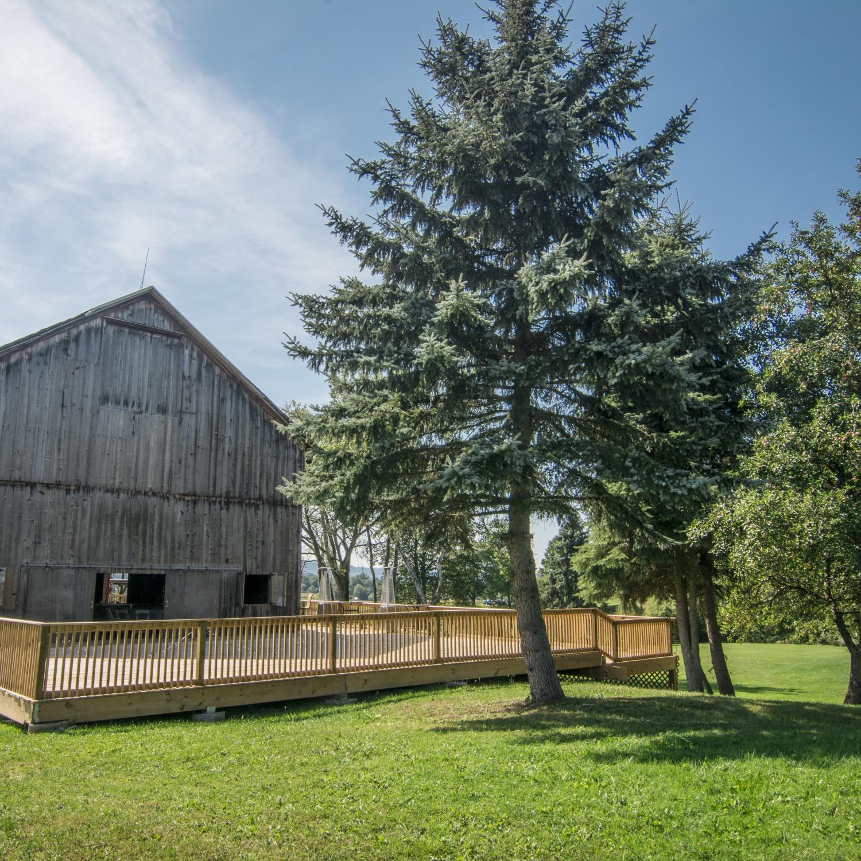 Orchard Grove Farms