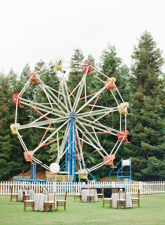 shannon jon wedding ferris wheel