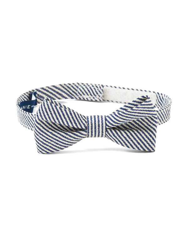 bing bearer white blue striped bow tie