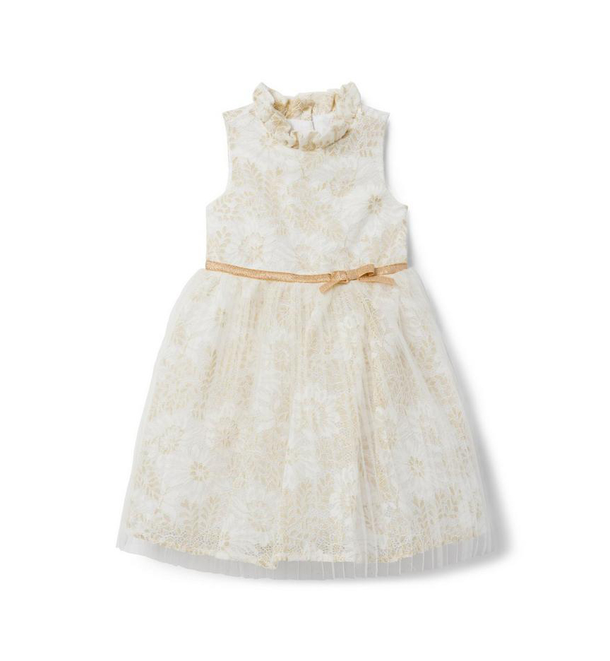 Isobella and Chloe Lace Silk Dress