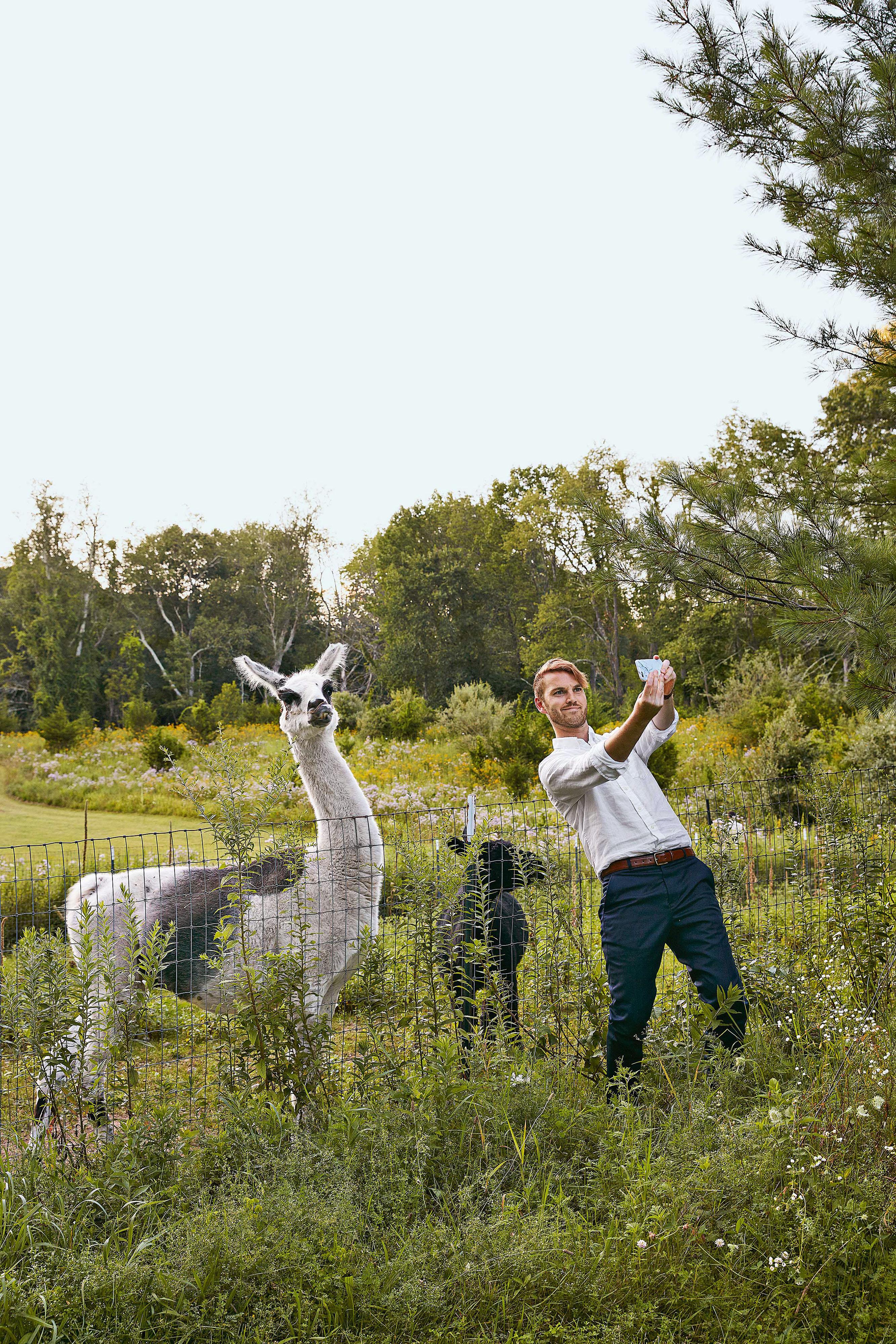avril quy wedding new york llama selfie