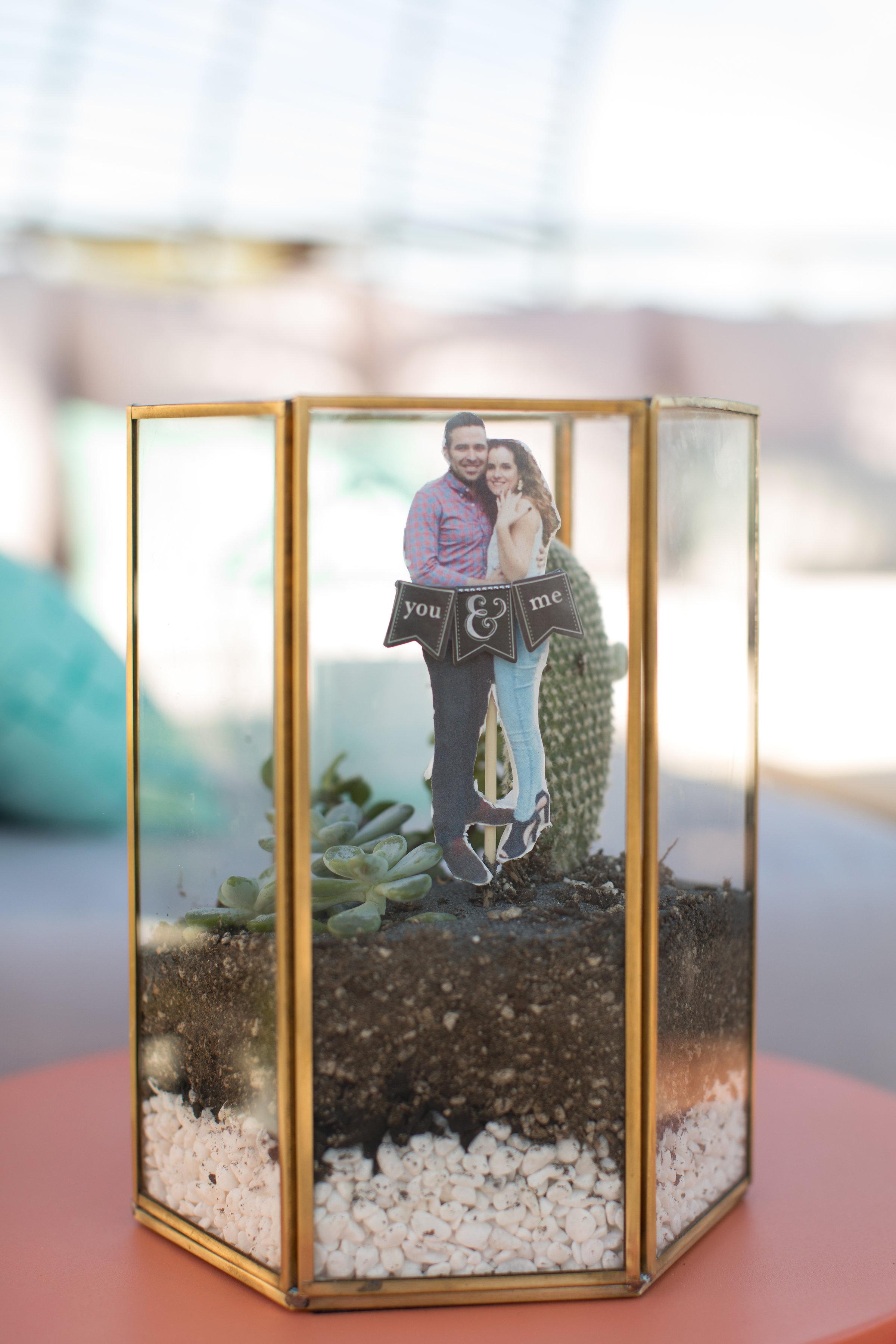 couple photo in terrarium