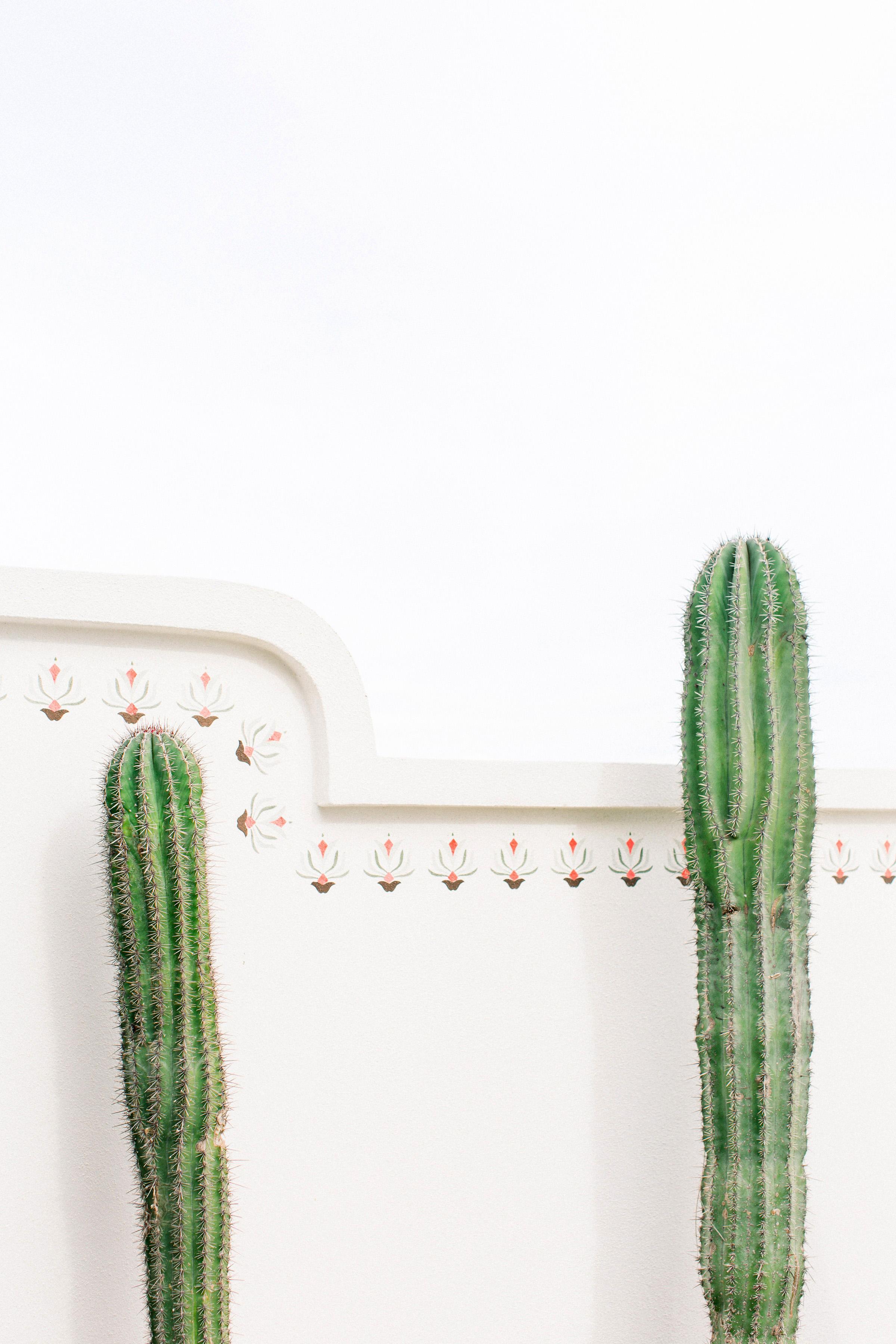 kourtney justin wedding mexico cactus palmilla