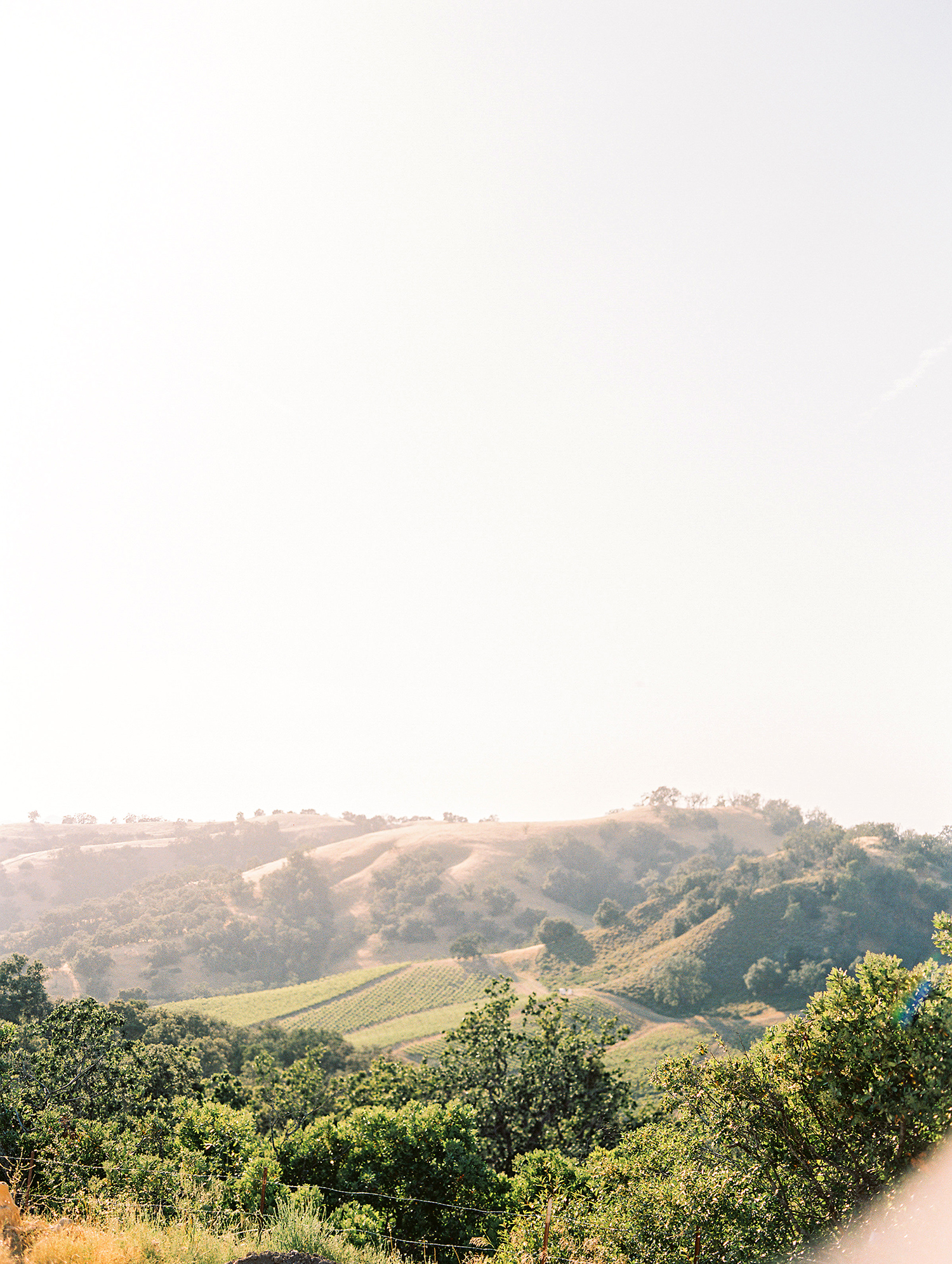 caitlin amit indian wedding california landscape