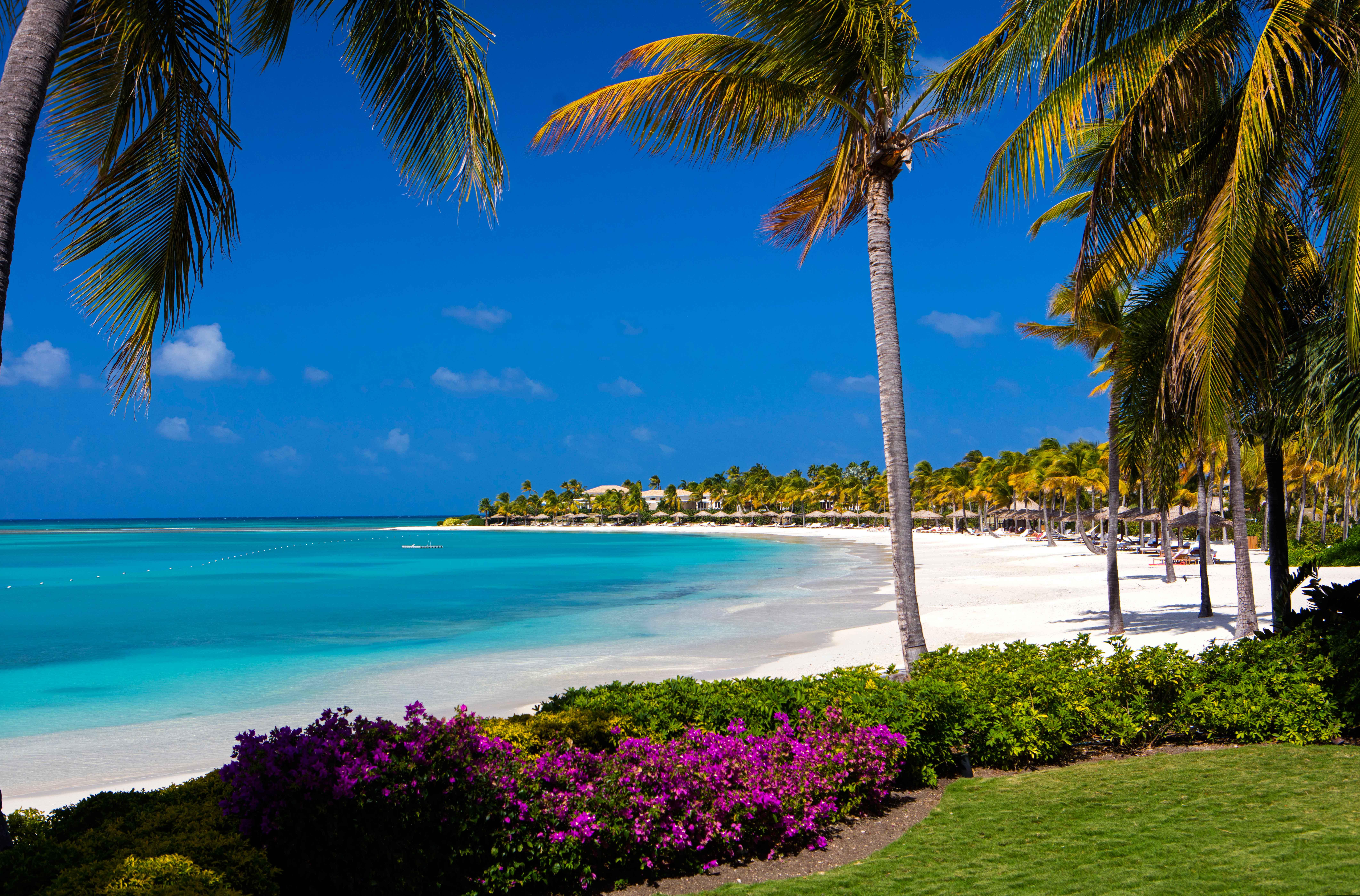 private island honeymoons jumby bay island
