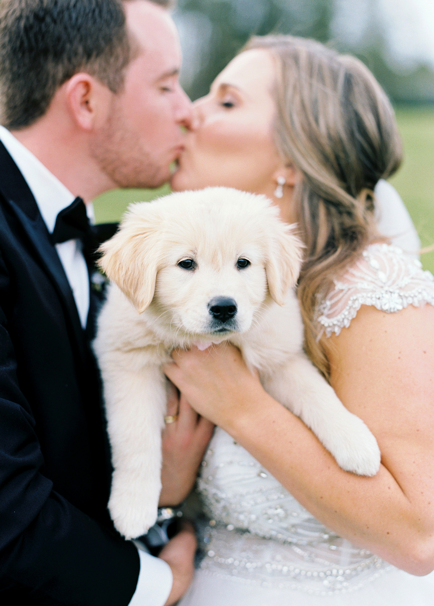 brittany alex wedding couple with puppy