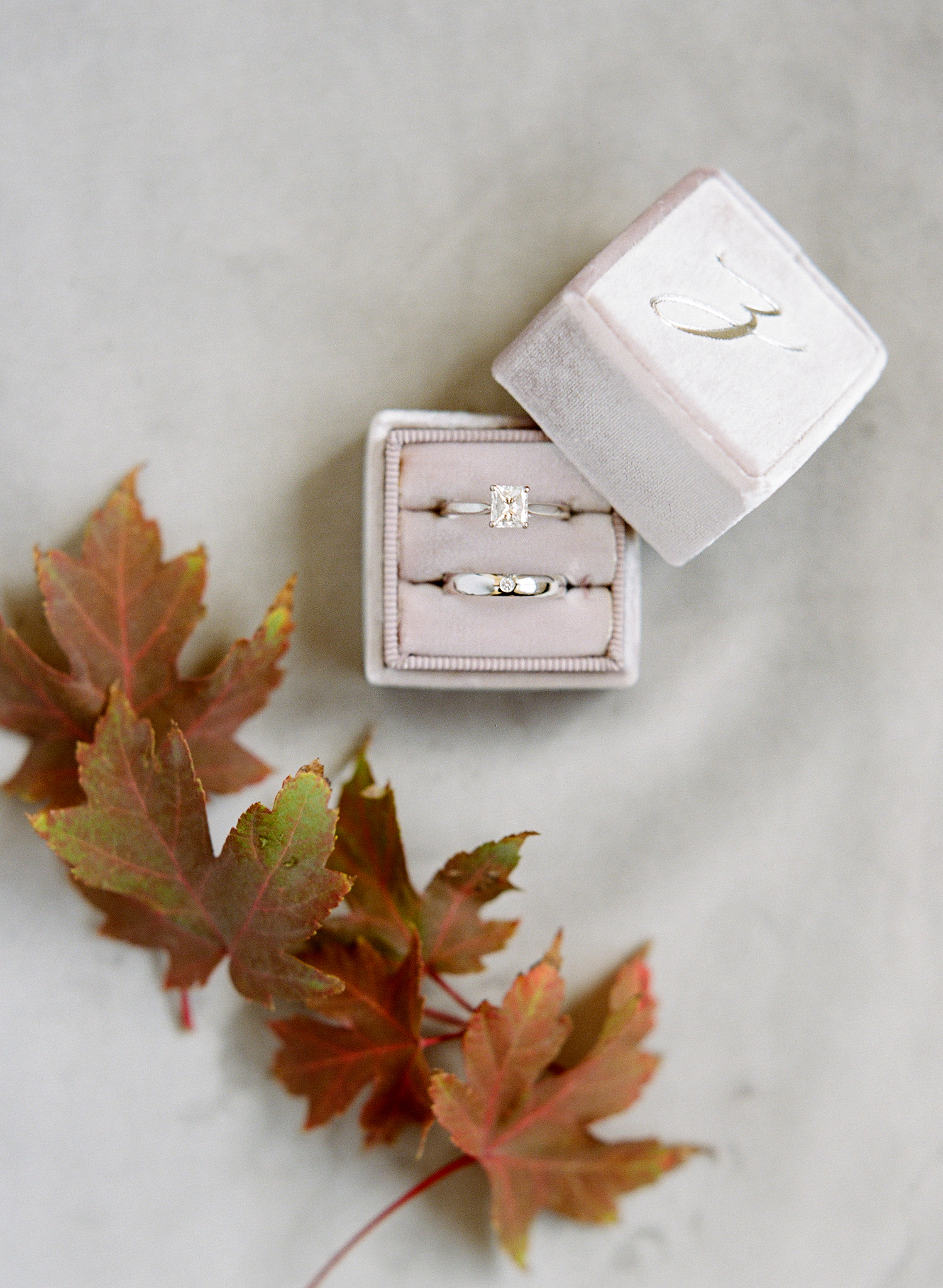 ivana nevin rings and leaves