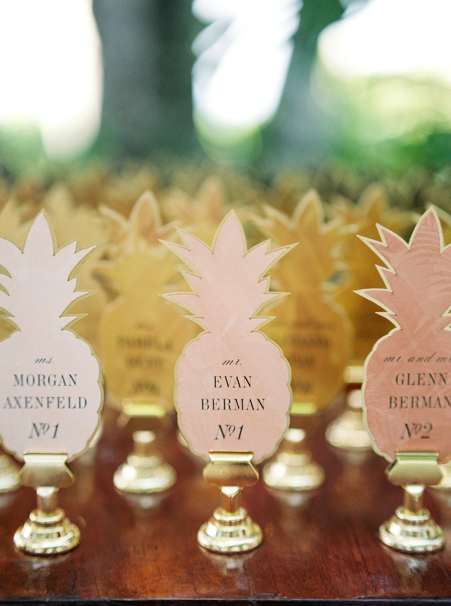 abbey jeffrey wedding pineapple escort cards