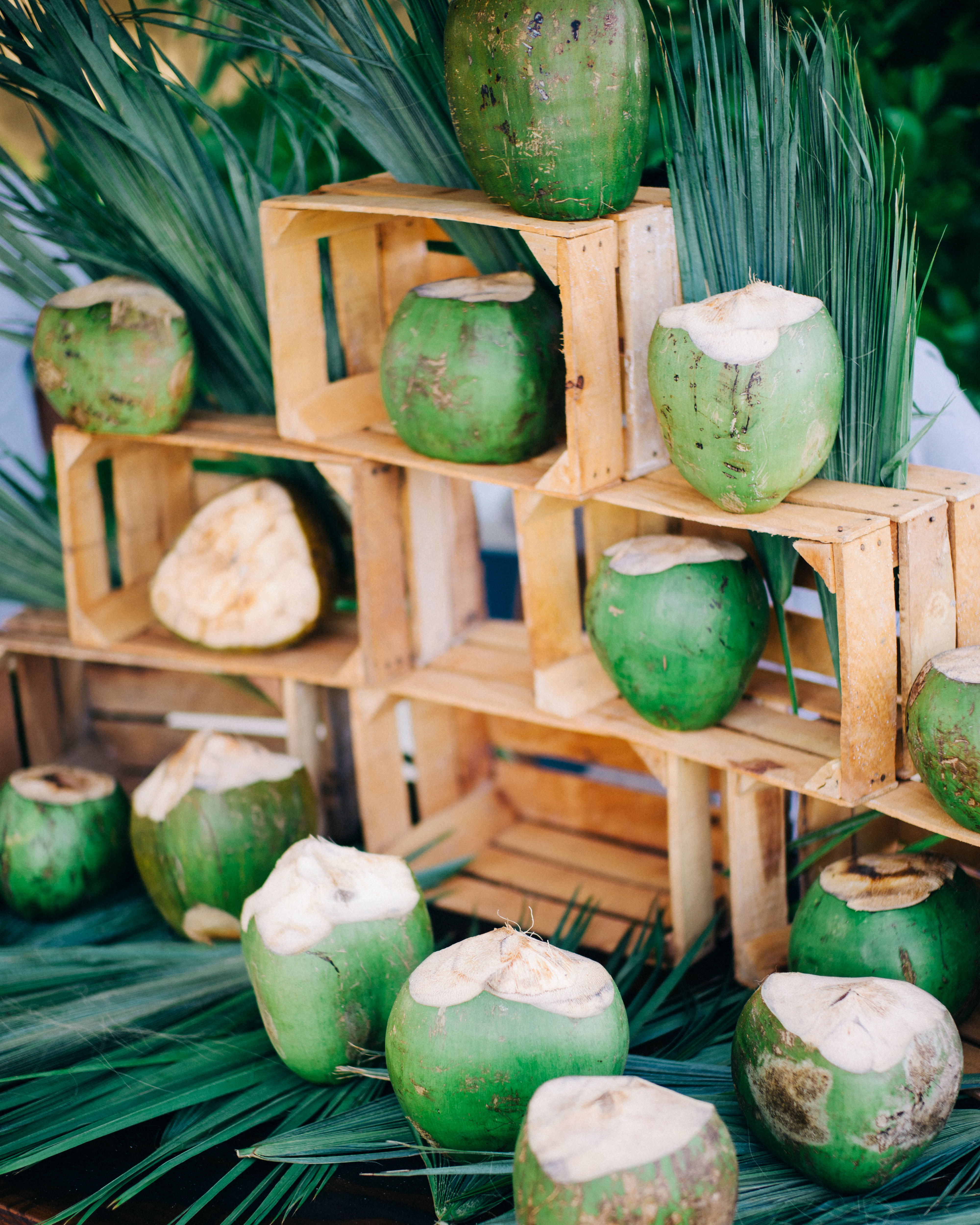 hydration stations non alcoholic coconut water