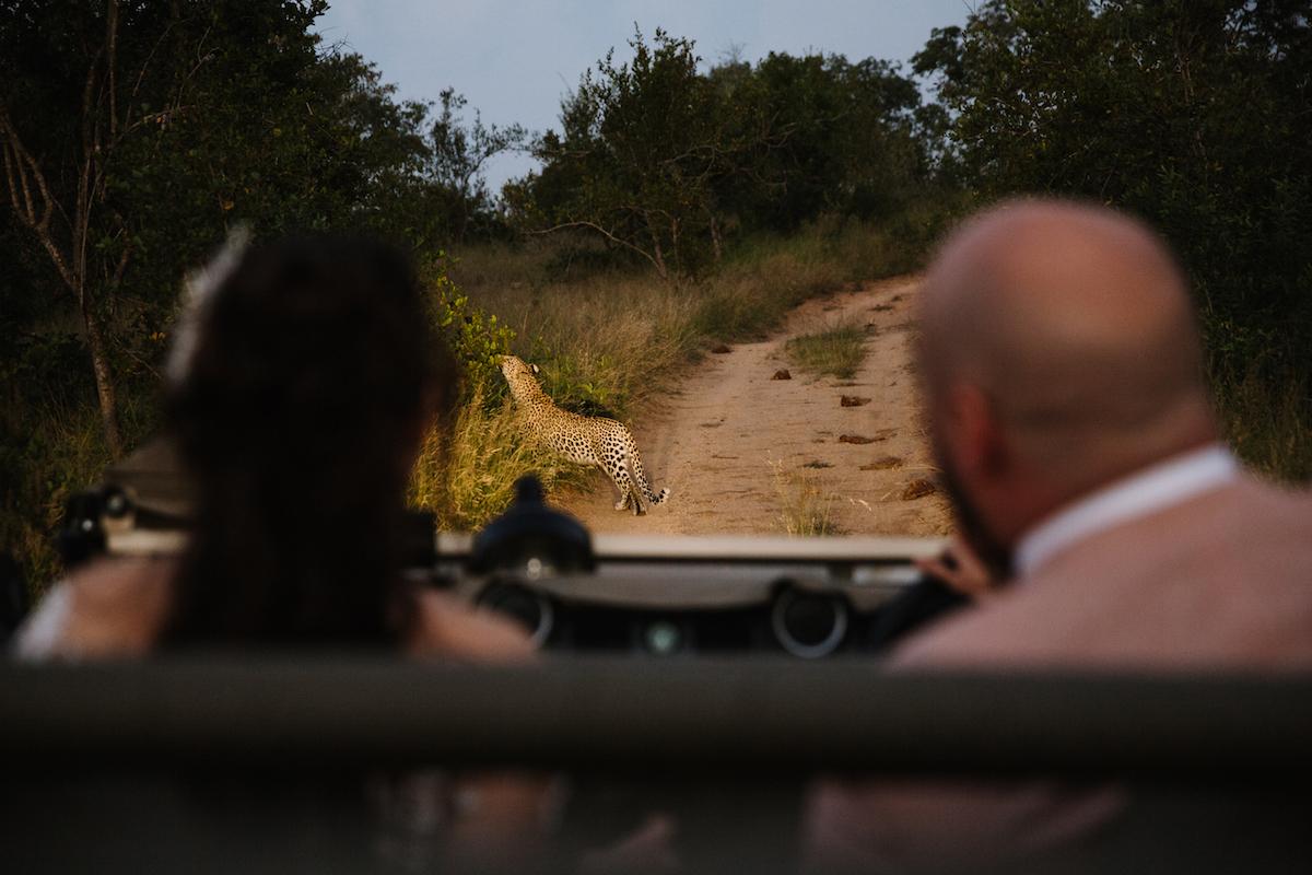 epic wedding photos megan ann