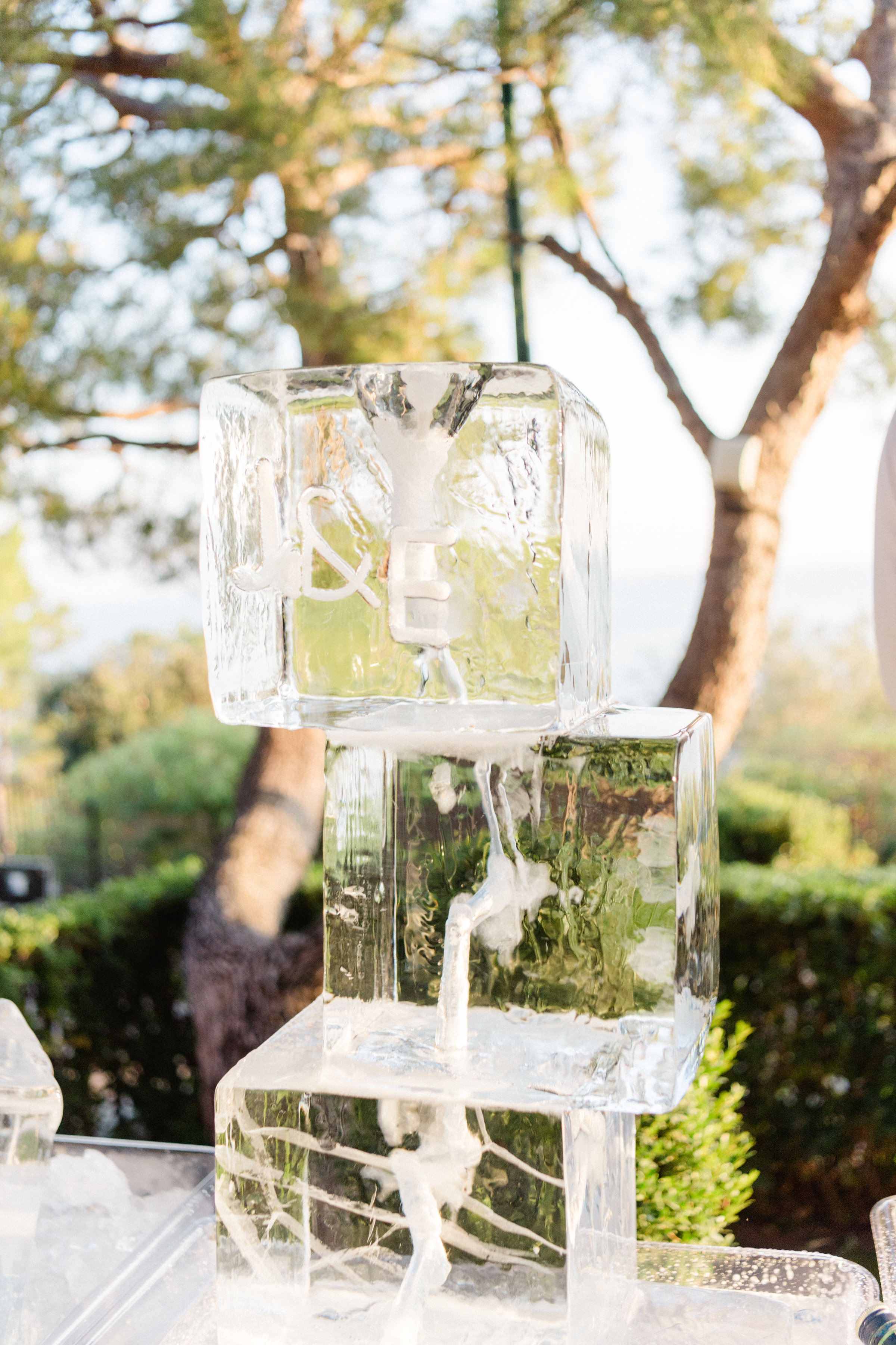 jiannina enzo wedding ice sculpture