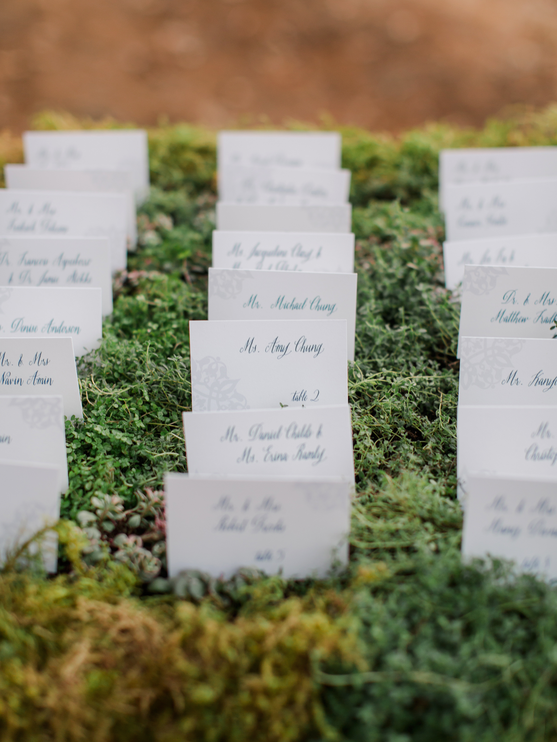 jenna alok welcome party escort cards