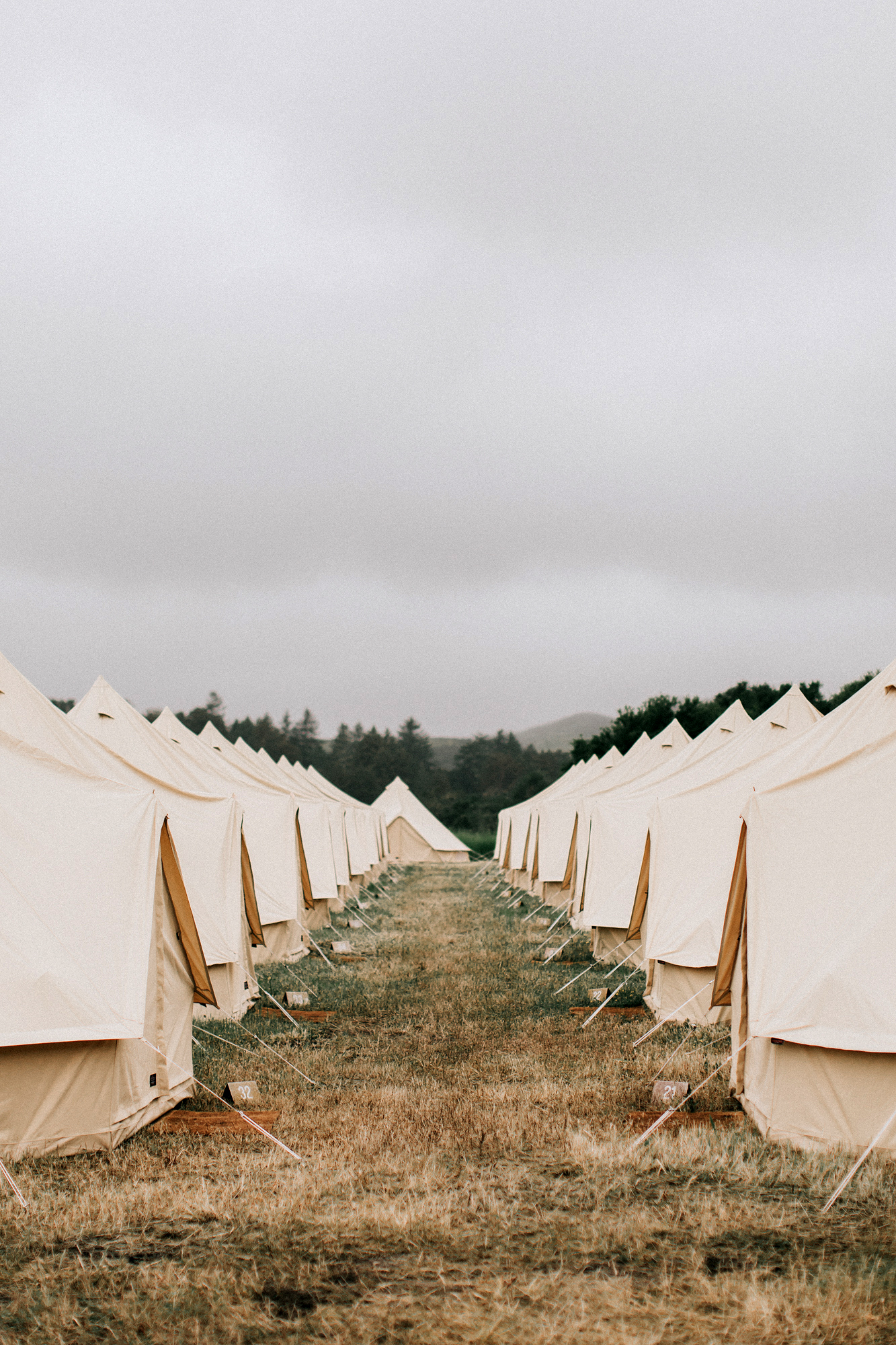 zai phil camping wedding tents rows outdoors