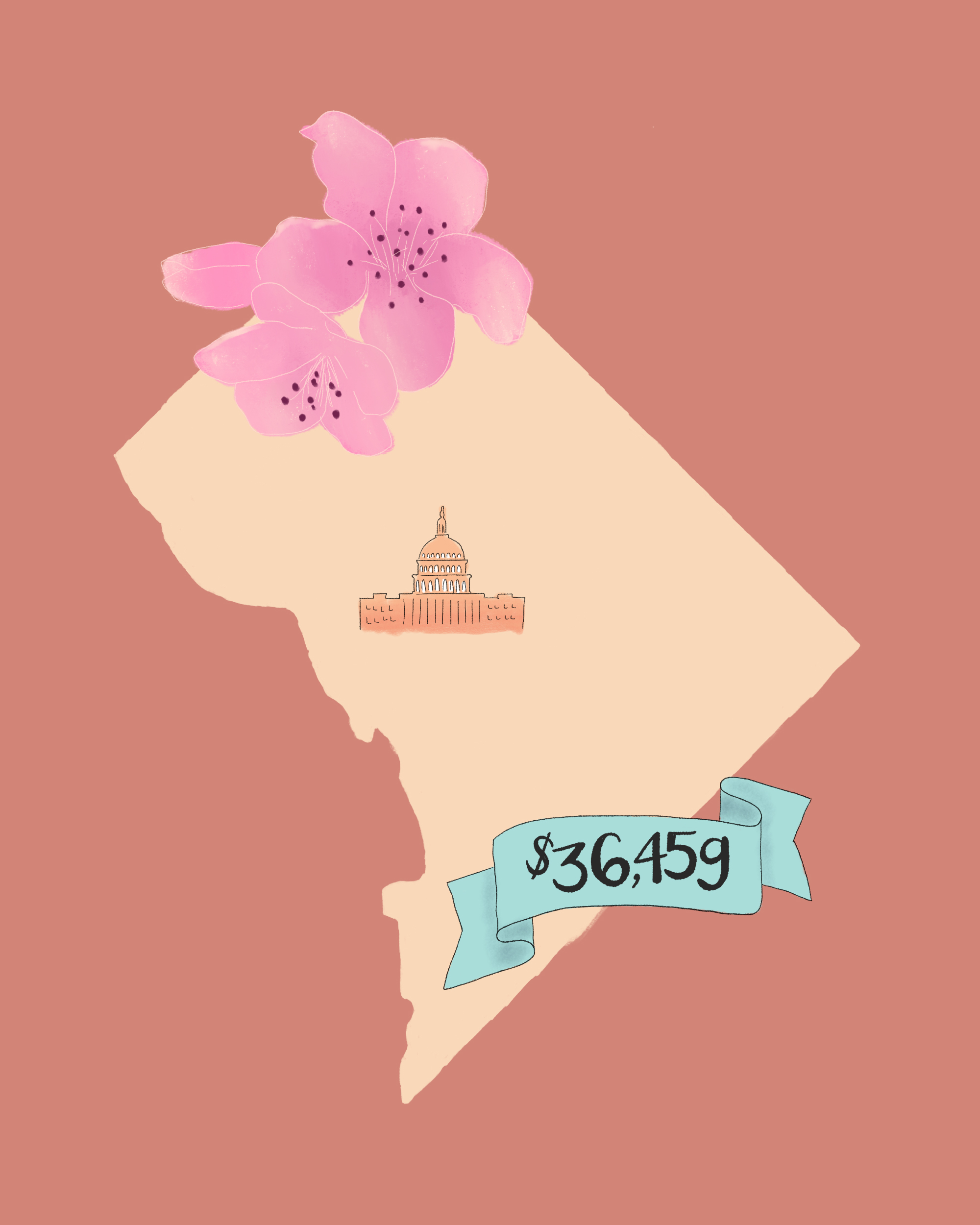 state wedding costs illustration washington dc