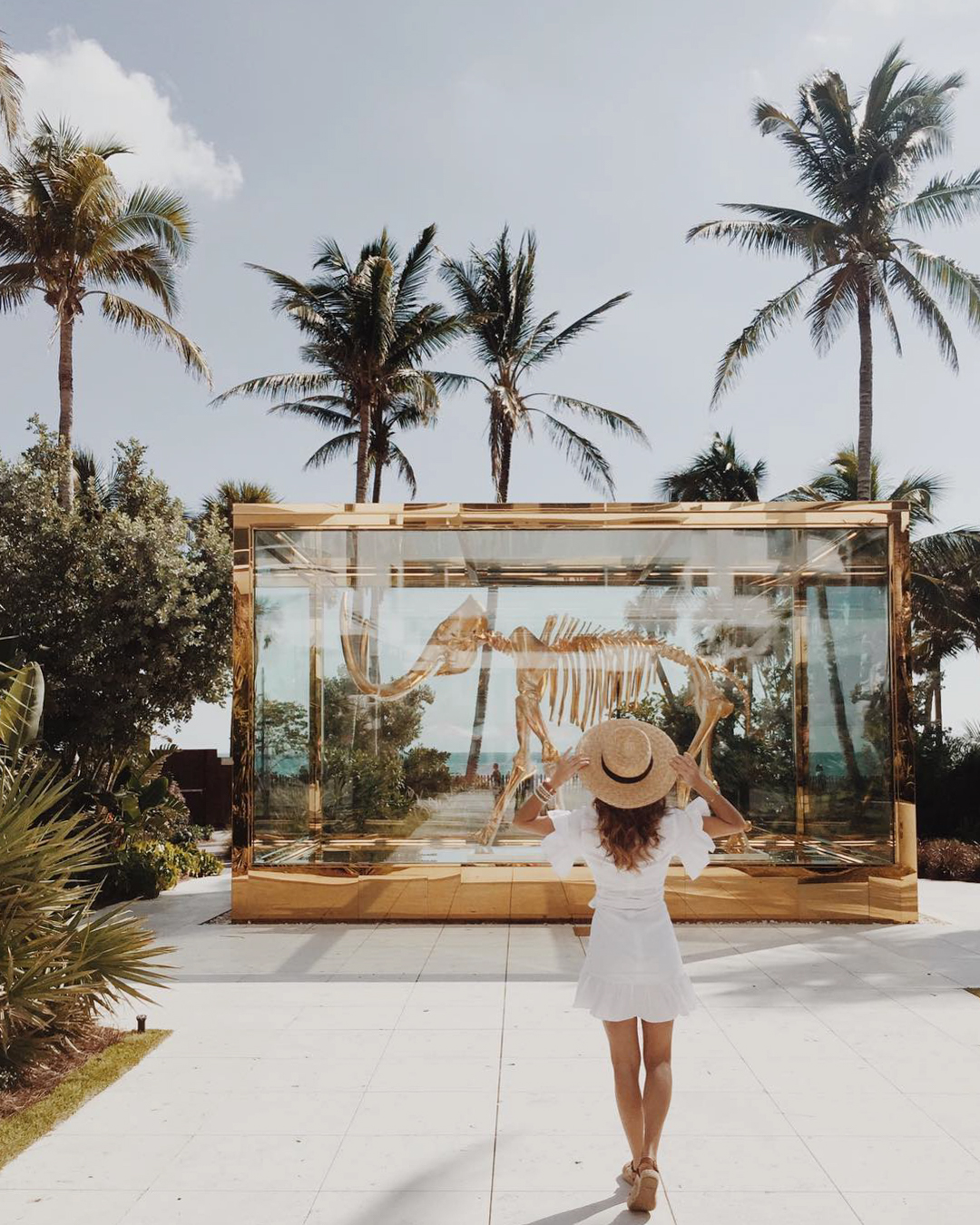 bachelorette cities miami women standing by palm trees and golden dinosaur skeleton
