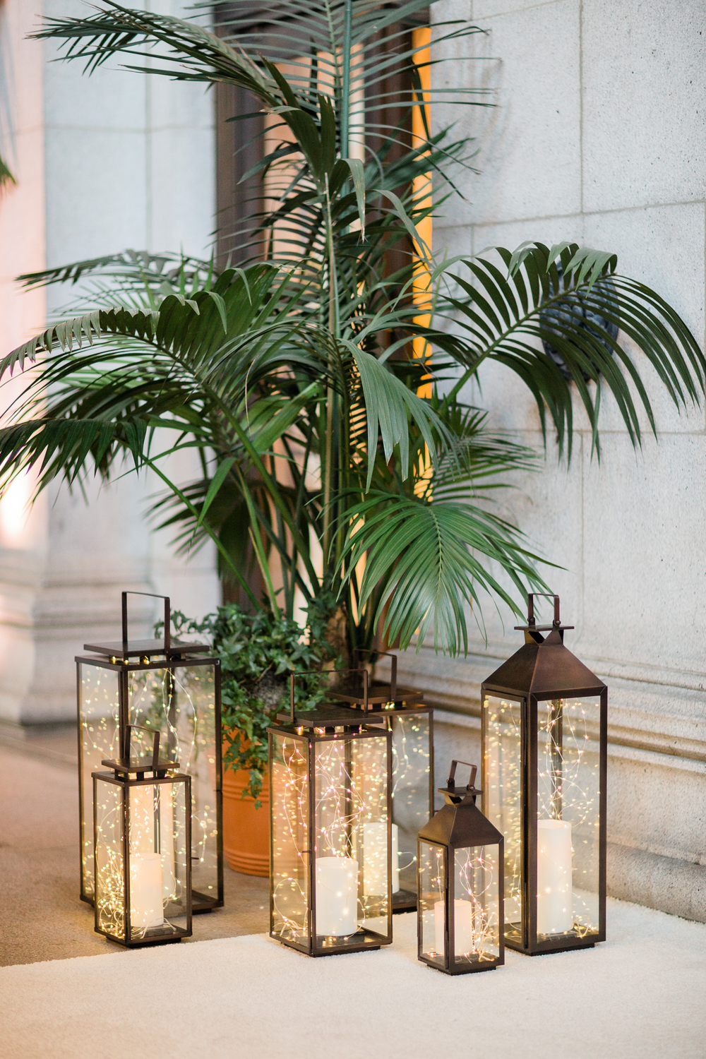 twinkle lights in lanterns around palm tree