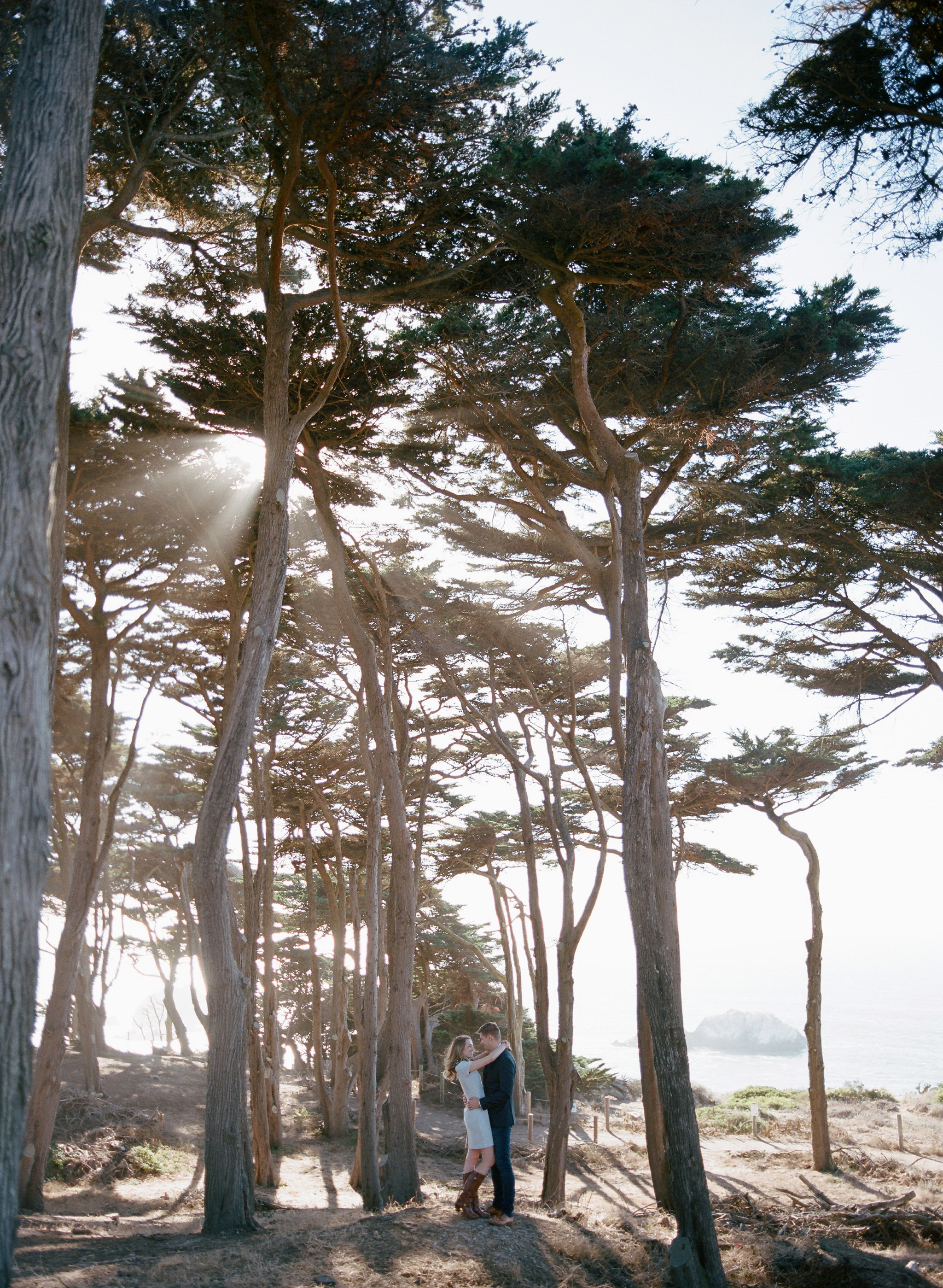 destination engagement couple tall trees with sunlight
