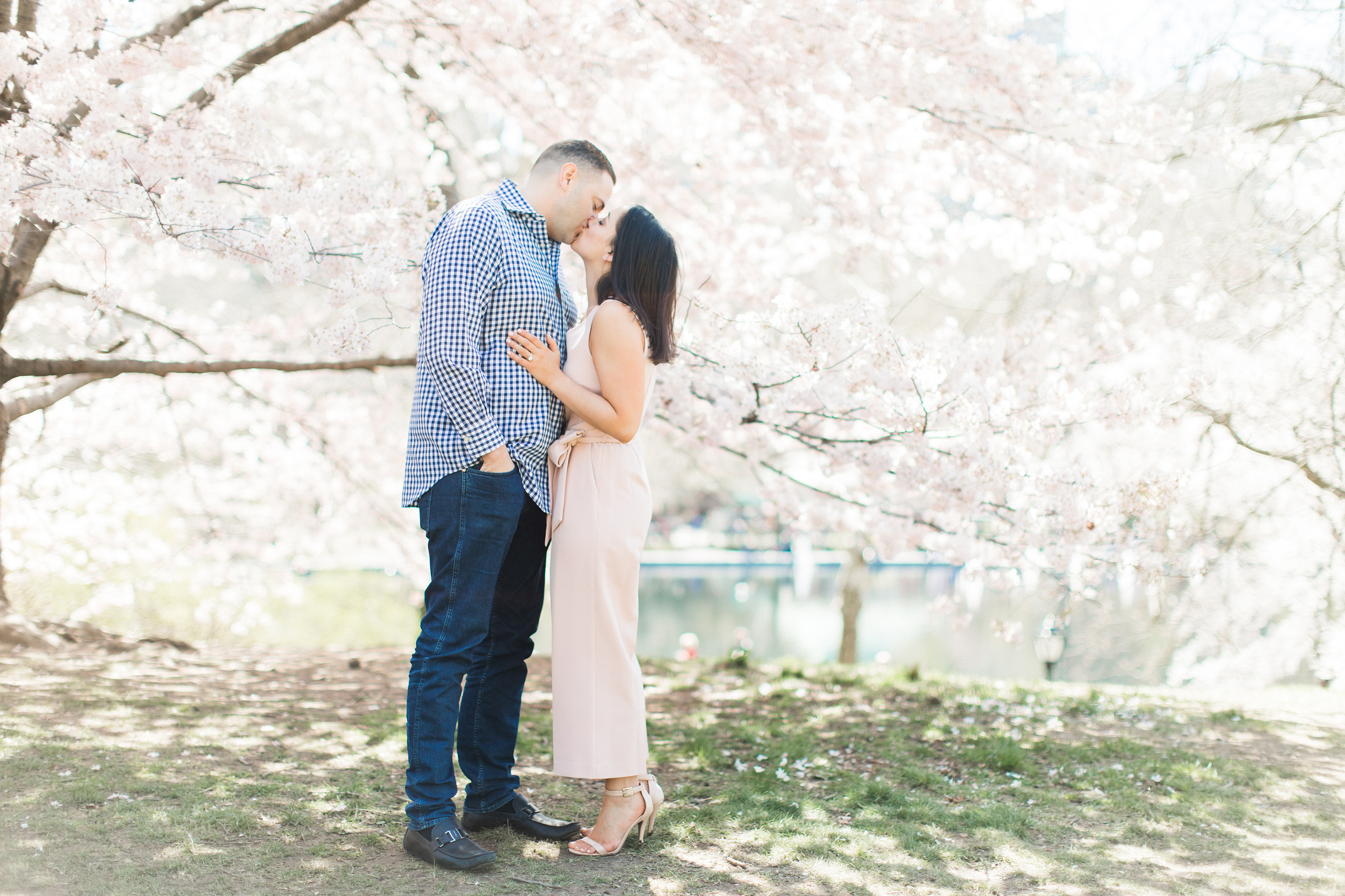 couple and cherry blossoms engagement