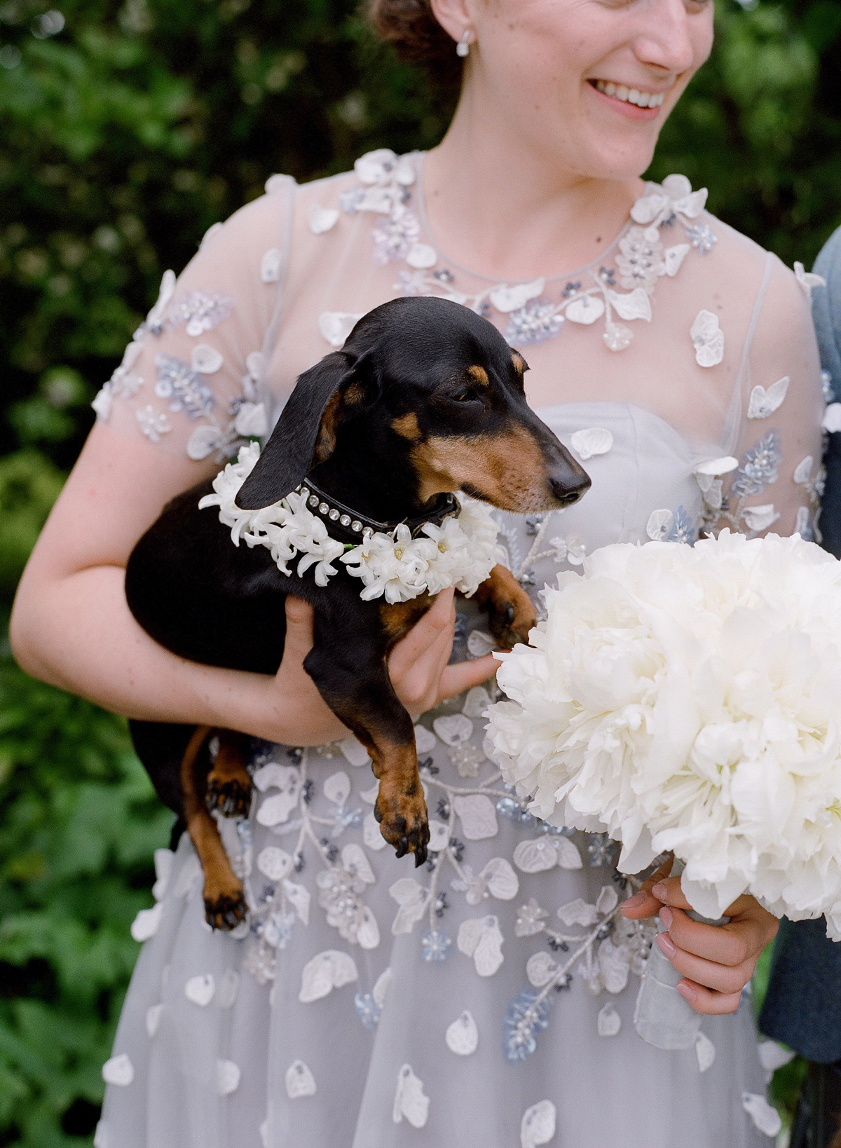 peony matthew england wedding bridesmaid holding dog
