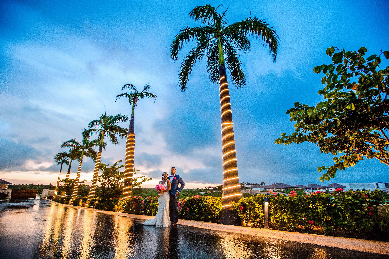 bride groom outdoor sunset palm tree lighting