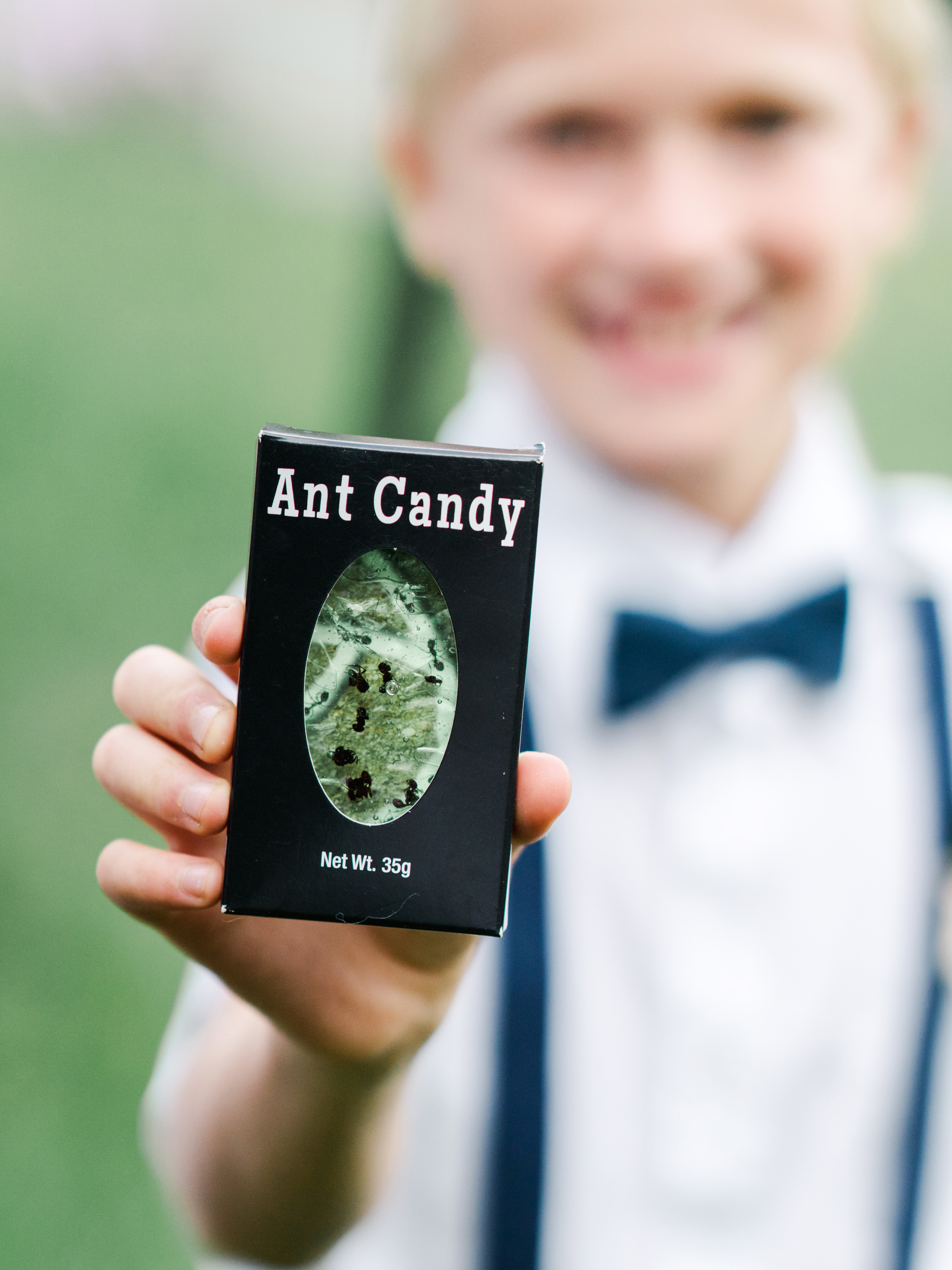 dayane collin wedding ant candy held up by boy in bowtie