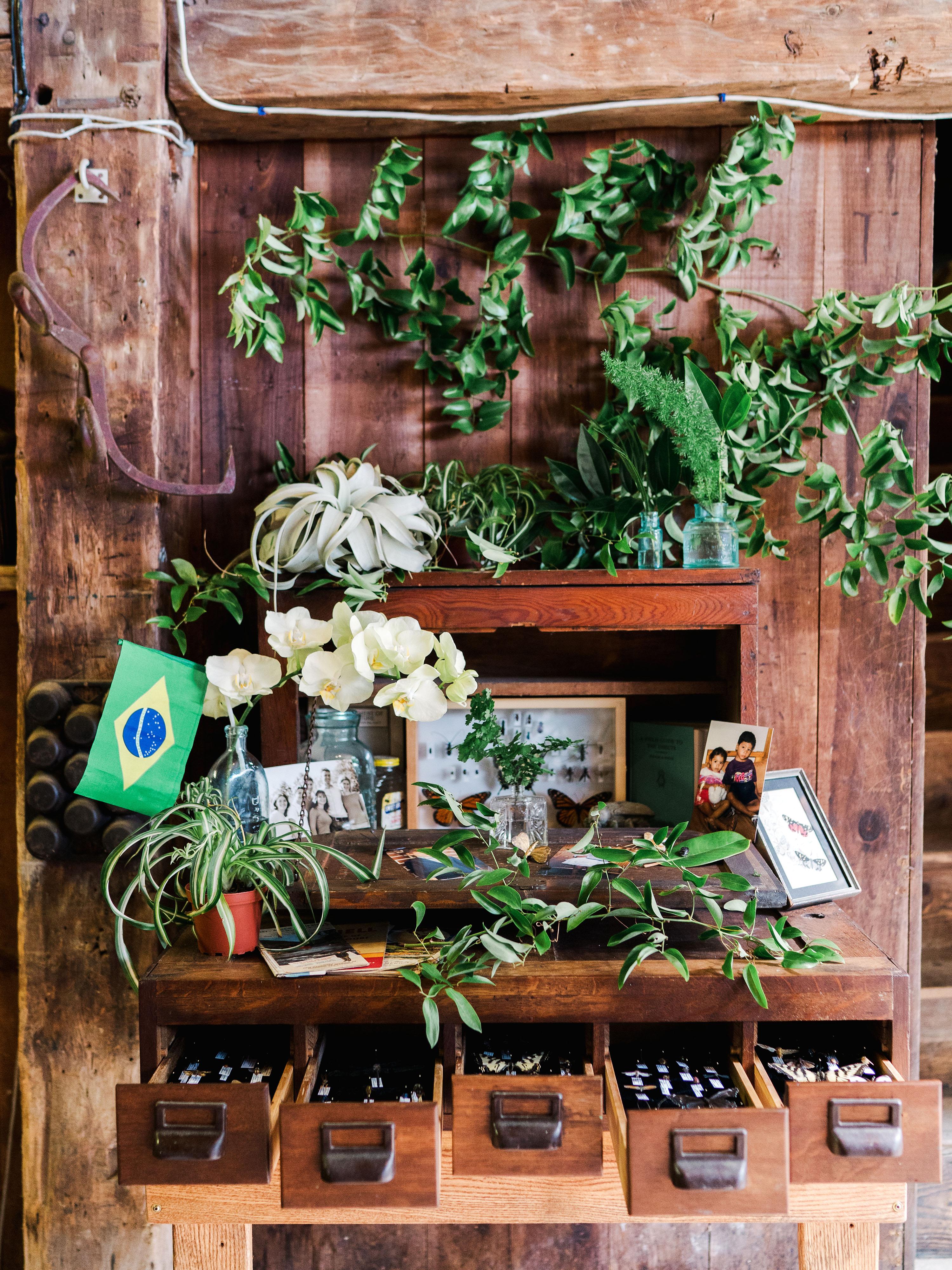 dayane collin wedding butterflies plants wooden furniture