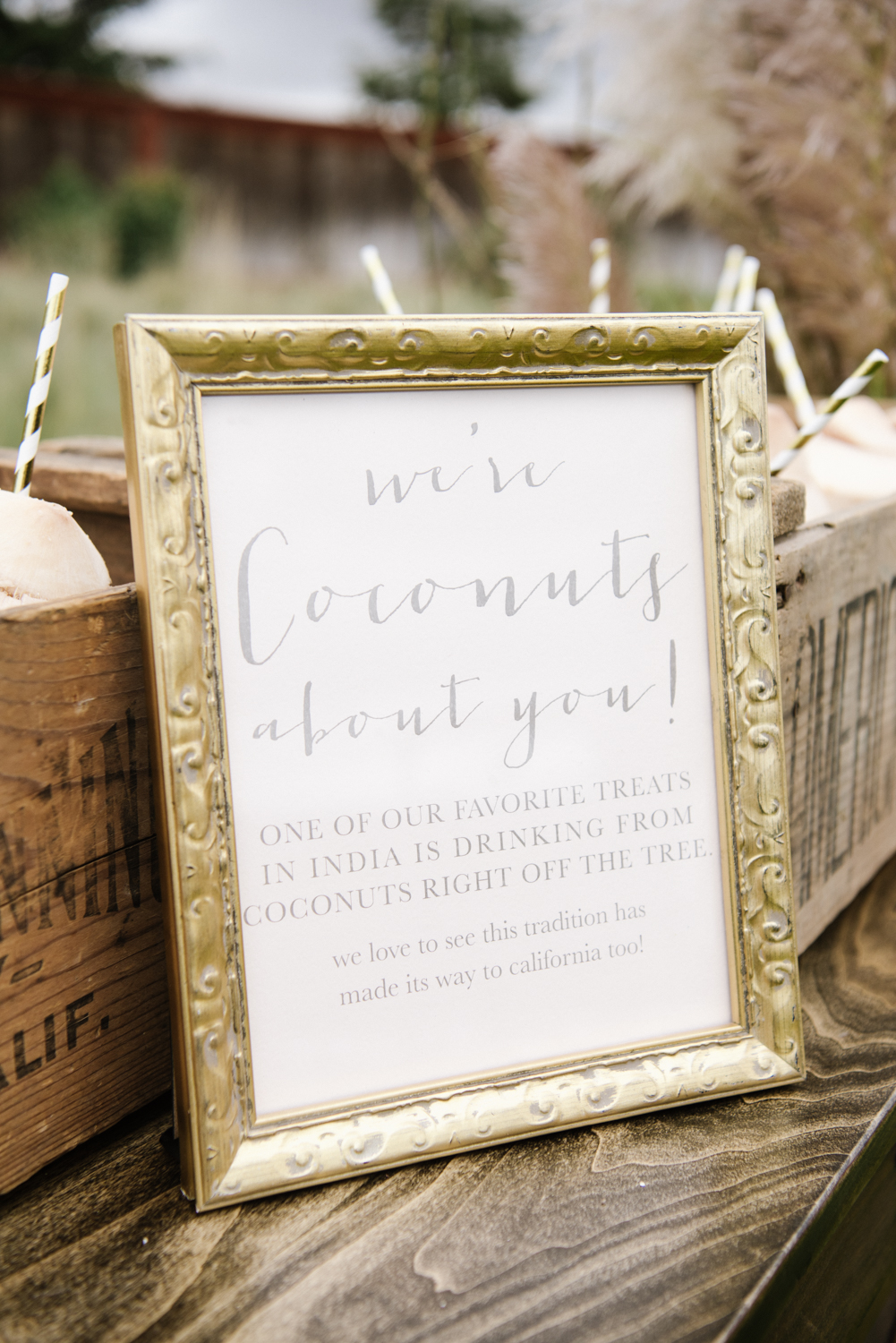 gold framed signs with puns throughout ceremony