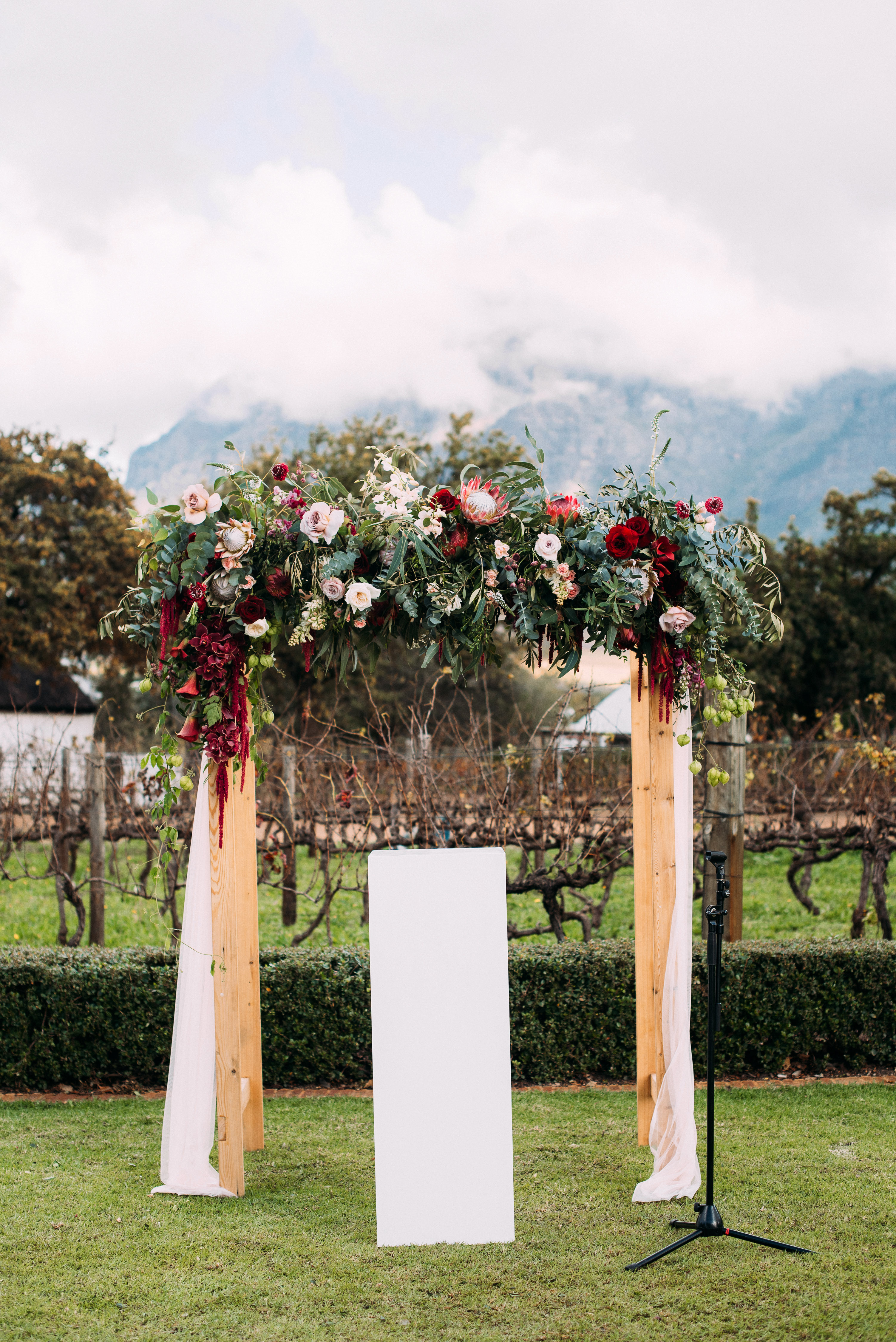 yolana douglas wedding outside ceremony arch
