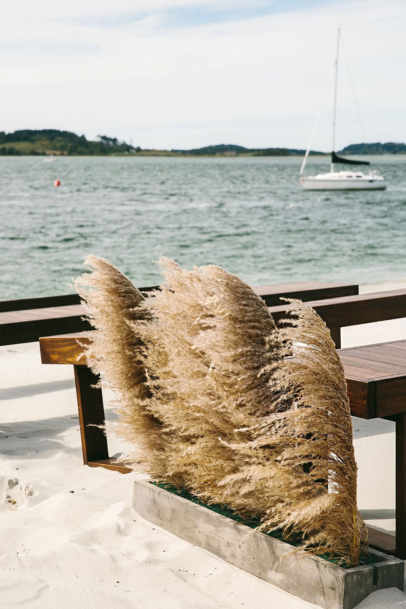 pampas grass beach wedding decor