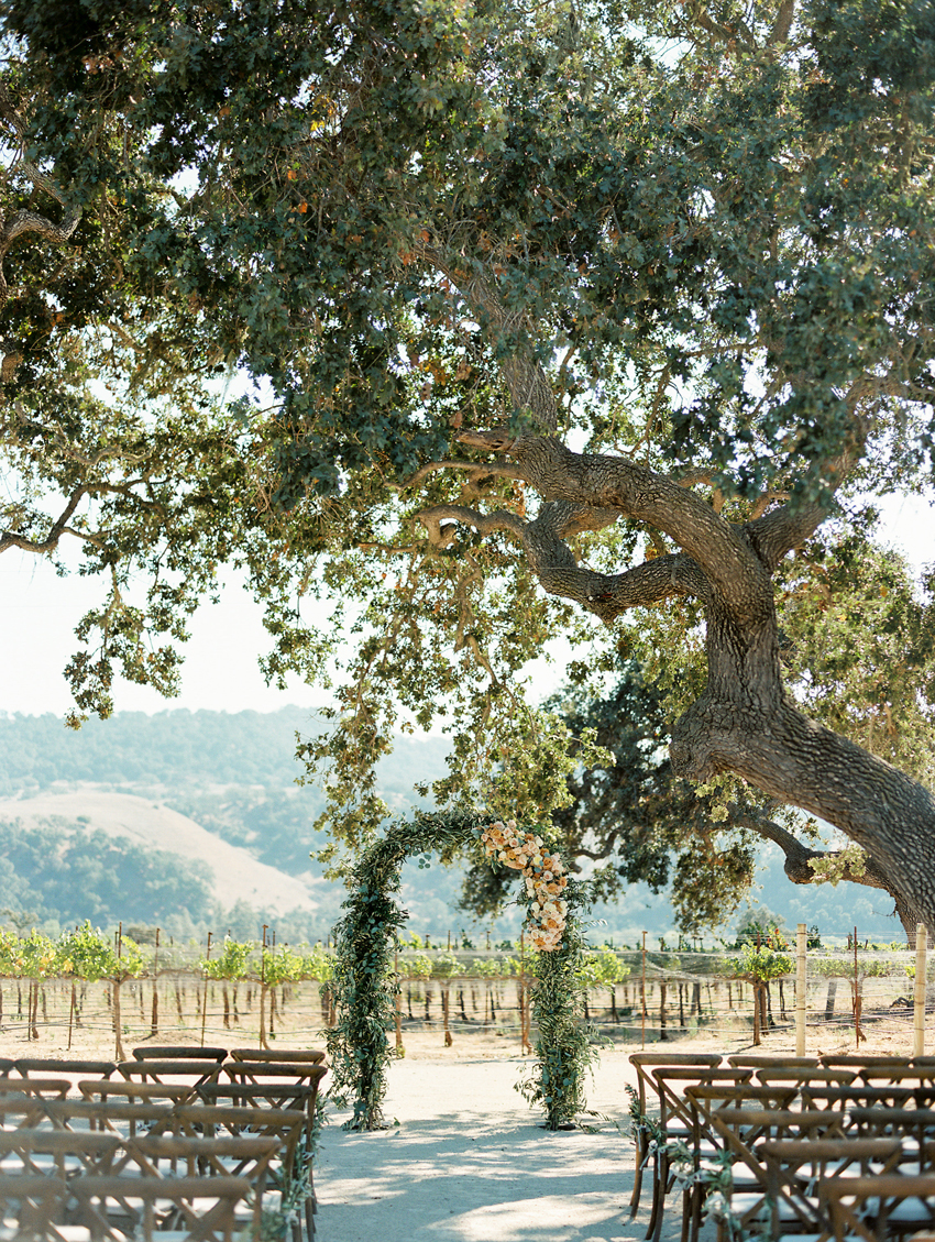 giant oak tree outdoor wedding ceremony vineyard venue
