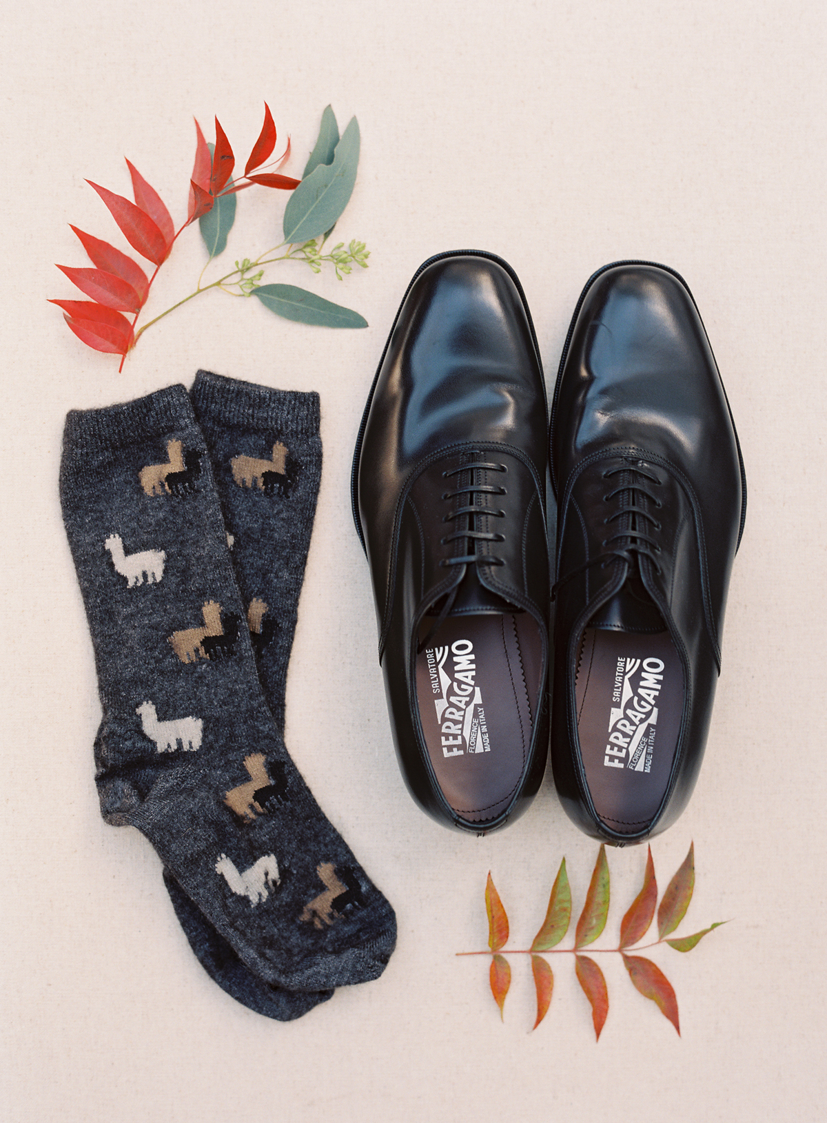 llama print socks and black dress shoes