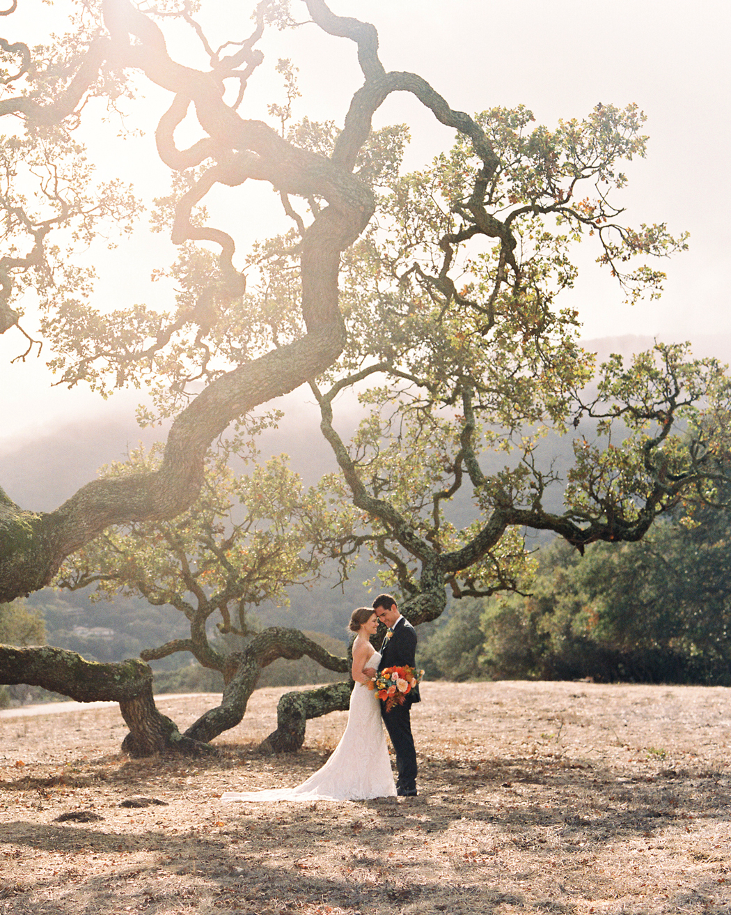 bride and groom outside under large tree