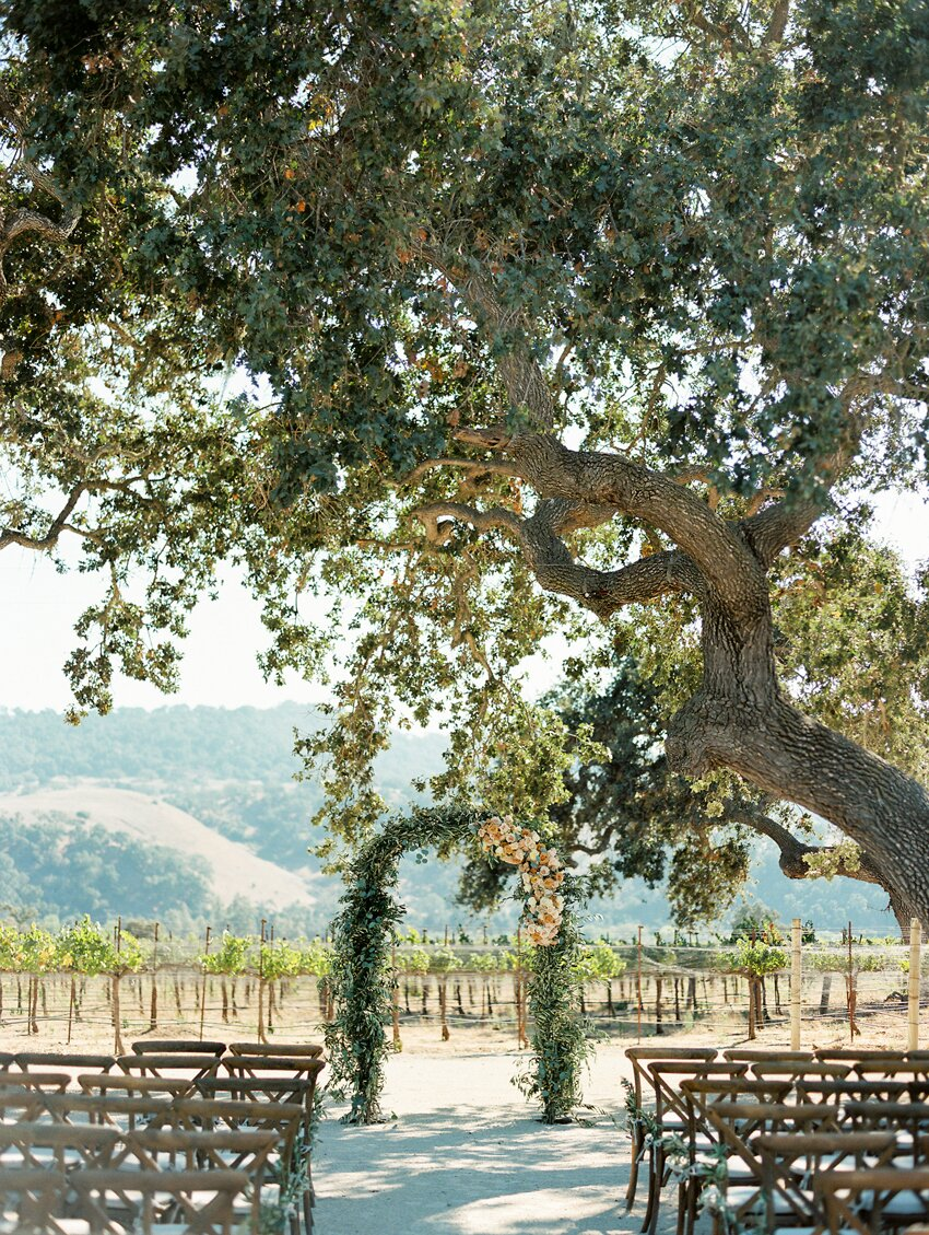 Everything You Need To Know Before Planning A Vineyard Wedding