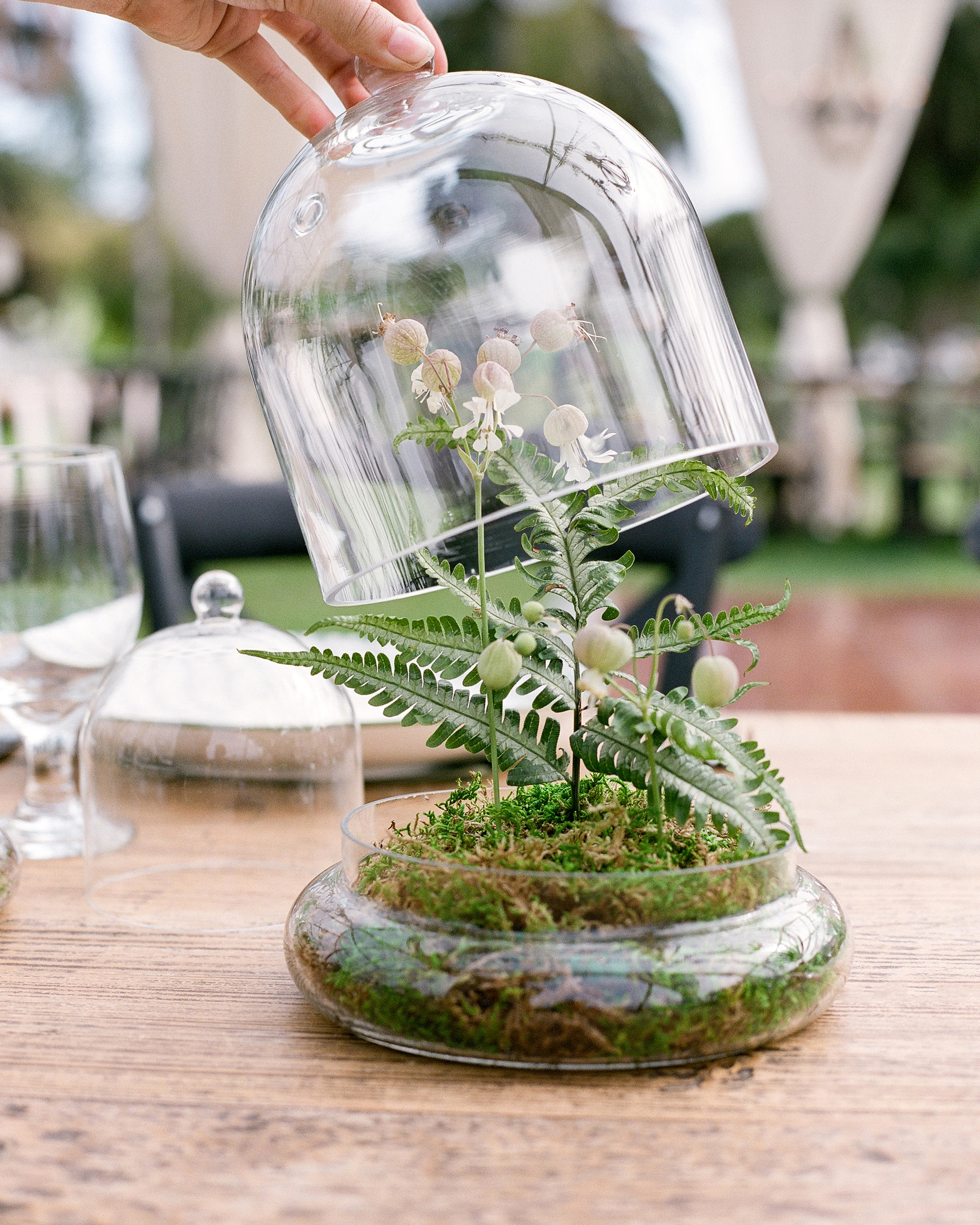 terrarium wedding ideas cloche