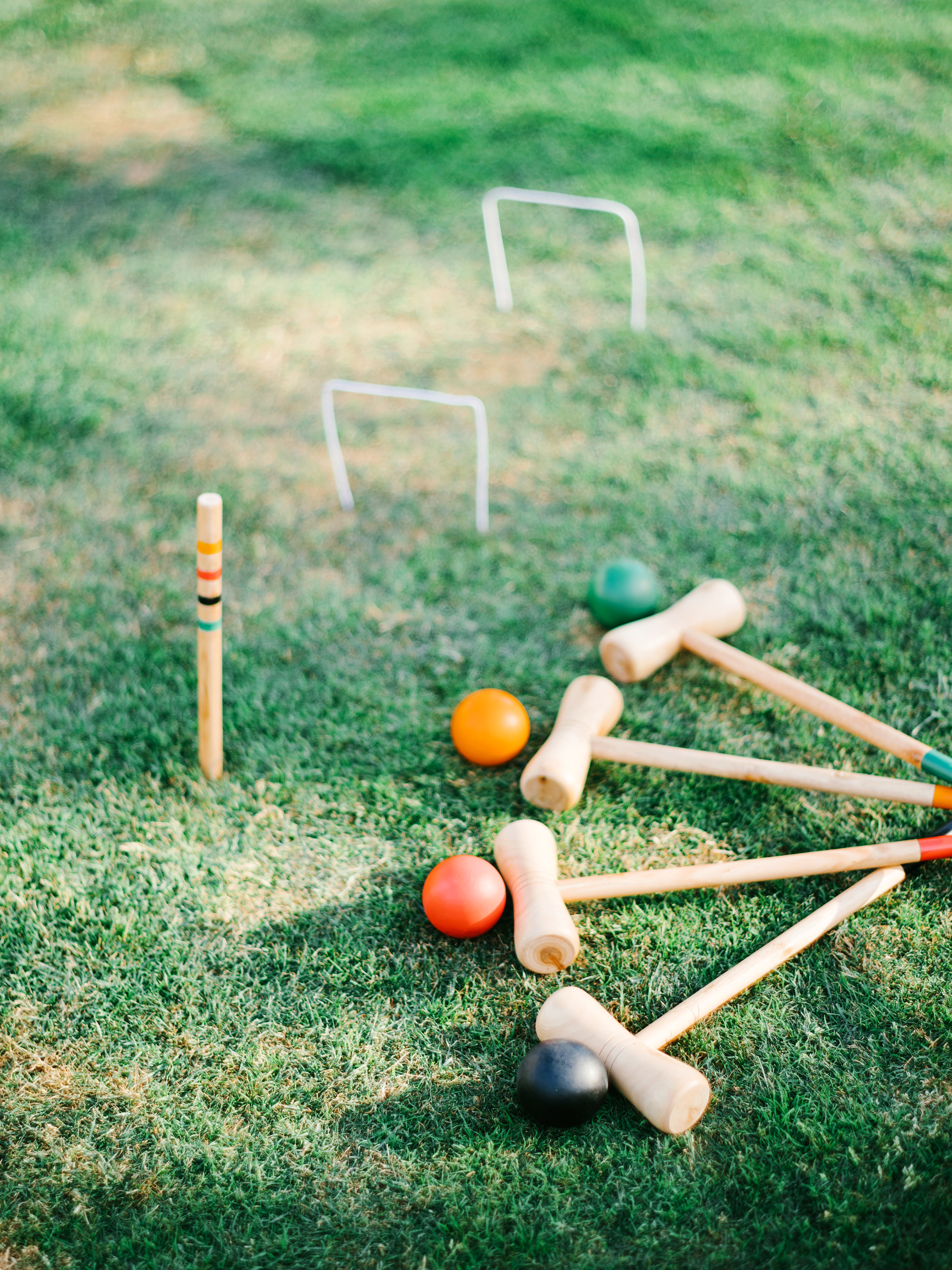 cavin david wedding croquet yard game