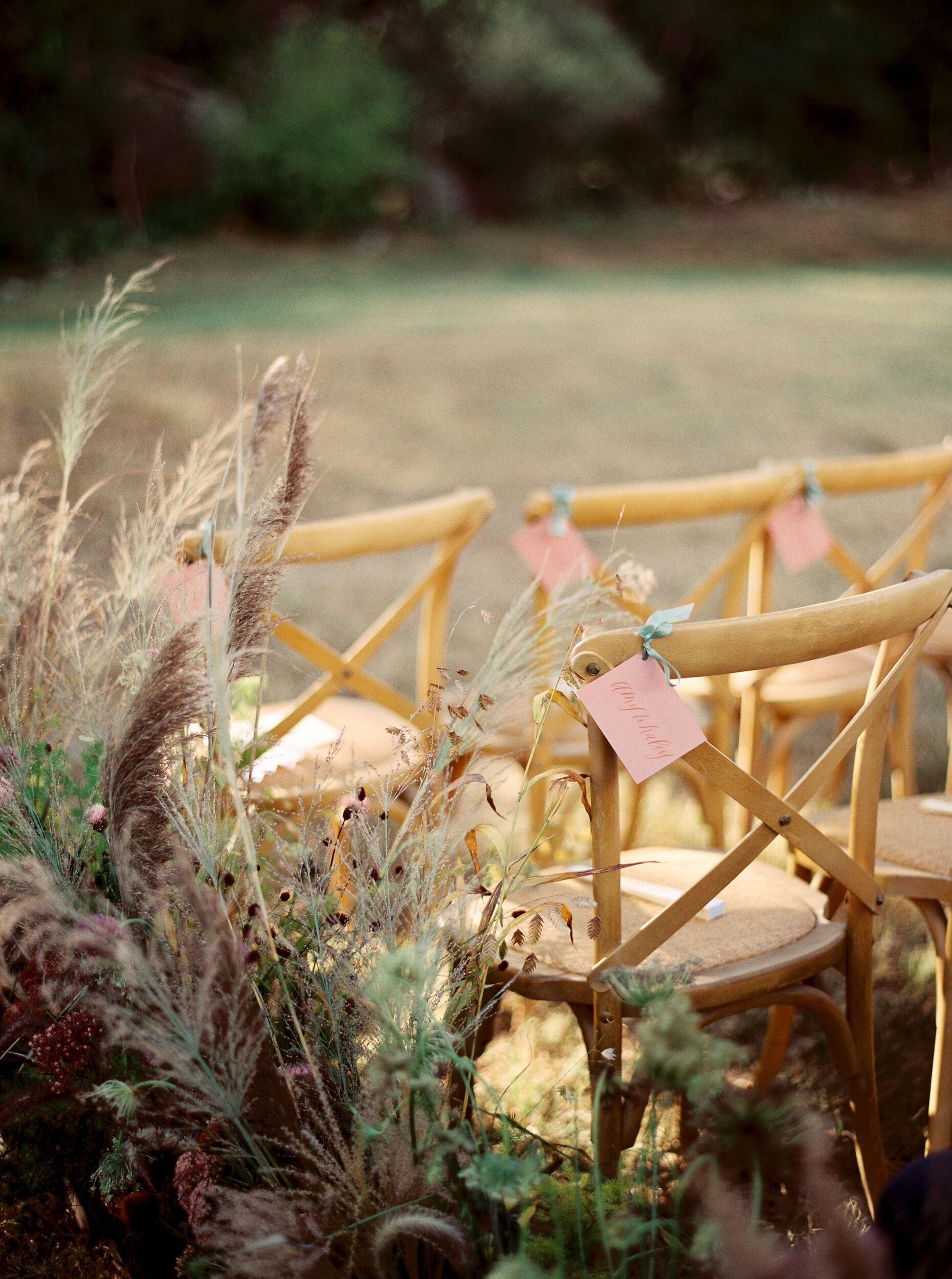 kelsey jacob wedding wooden chairs with grasses growing around them