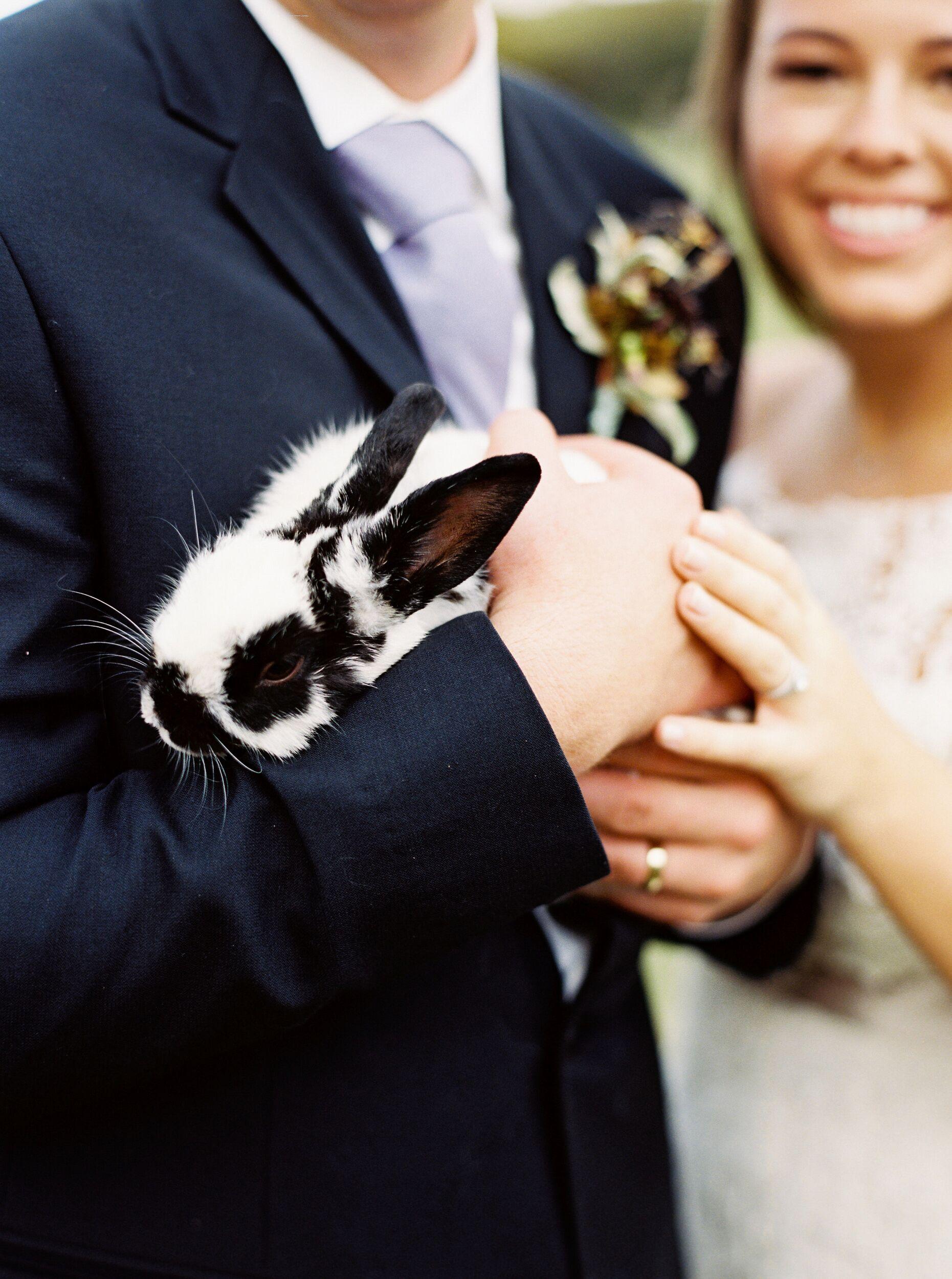 kelsey jacob wedding bride and groom holding bunny
