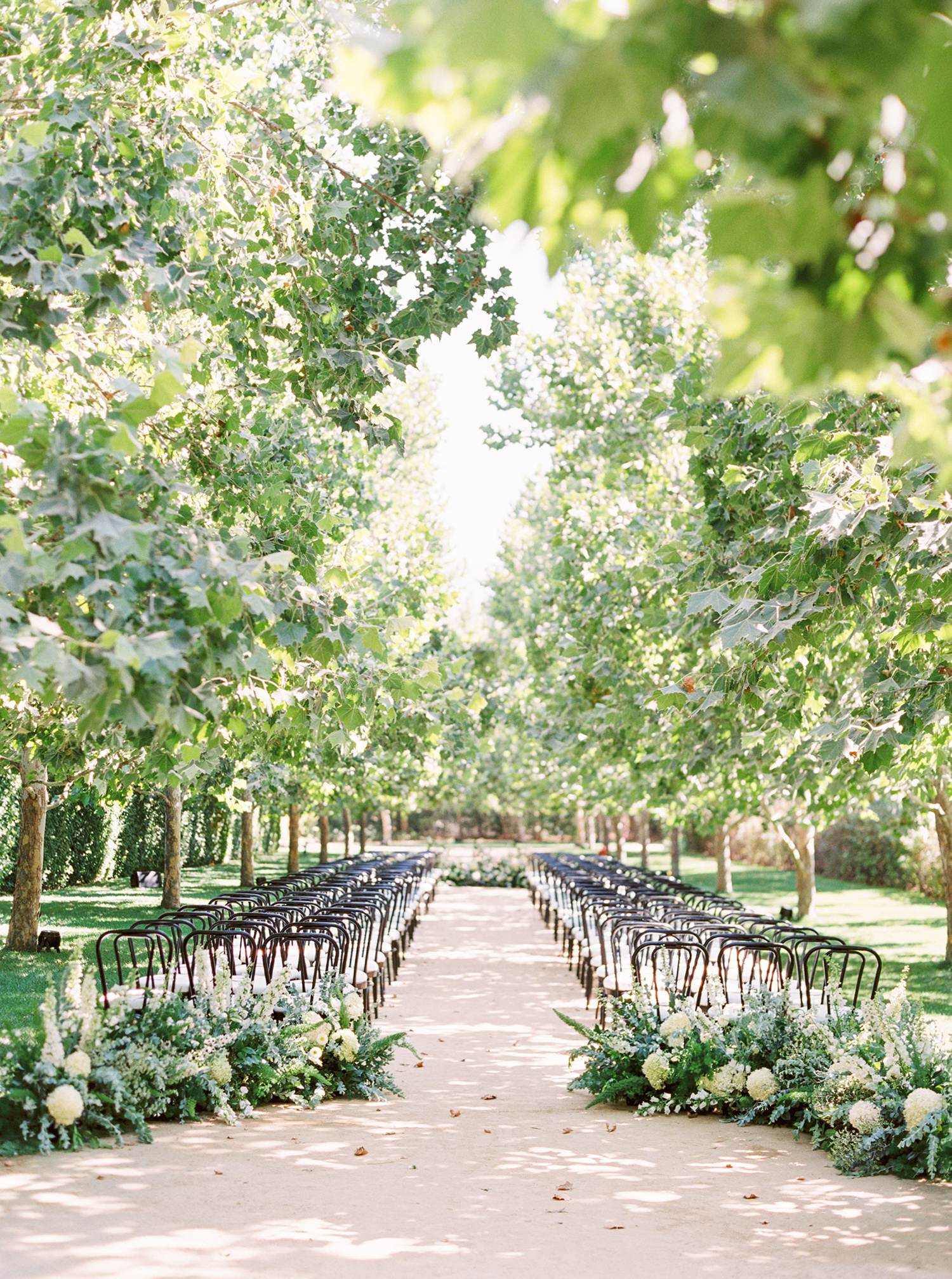 katie mike wedding ceremony trees and seating