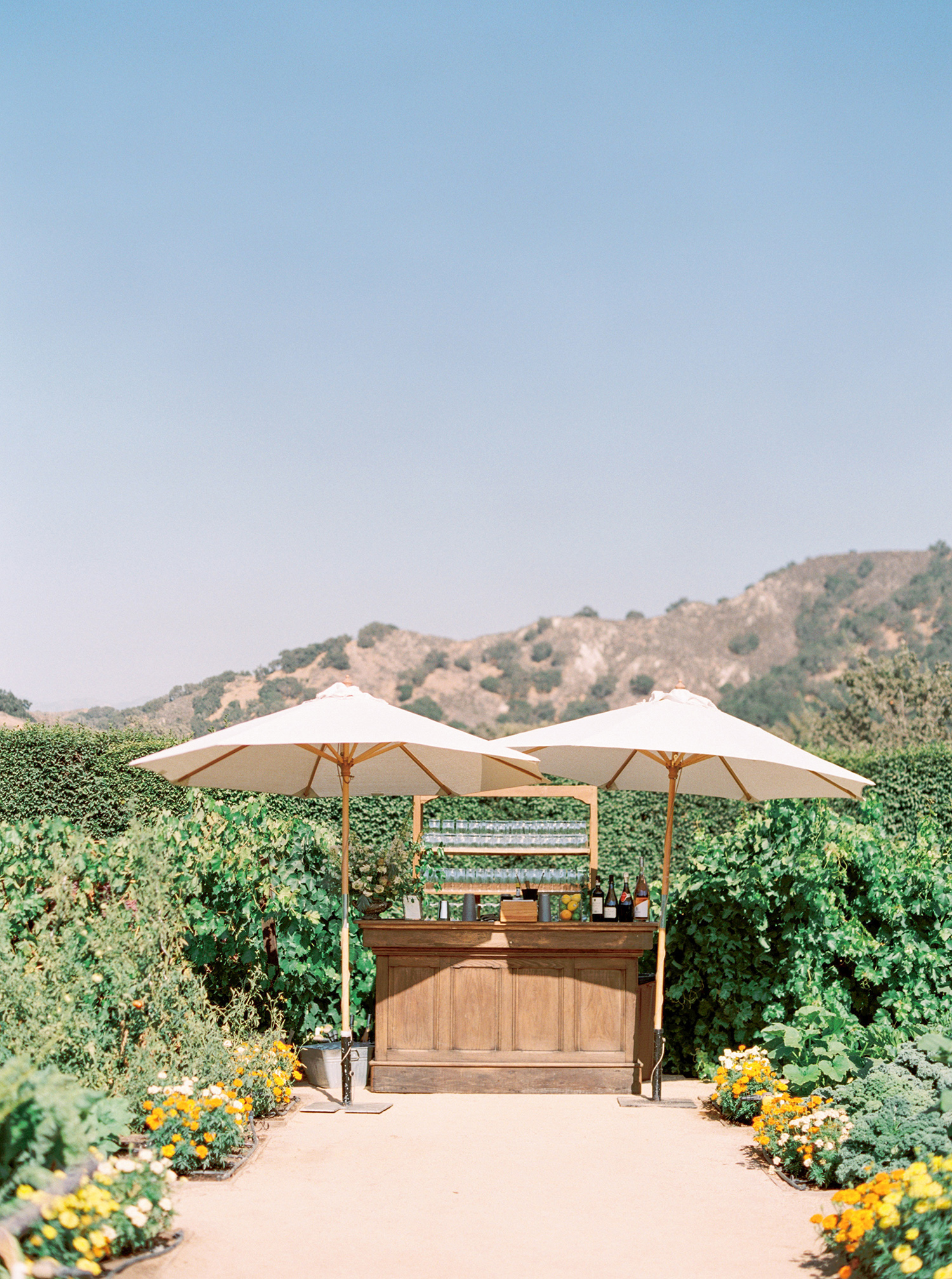 katie mike wedding bar with mountain back drop
