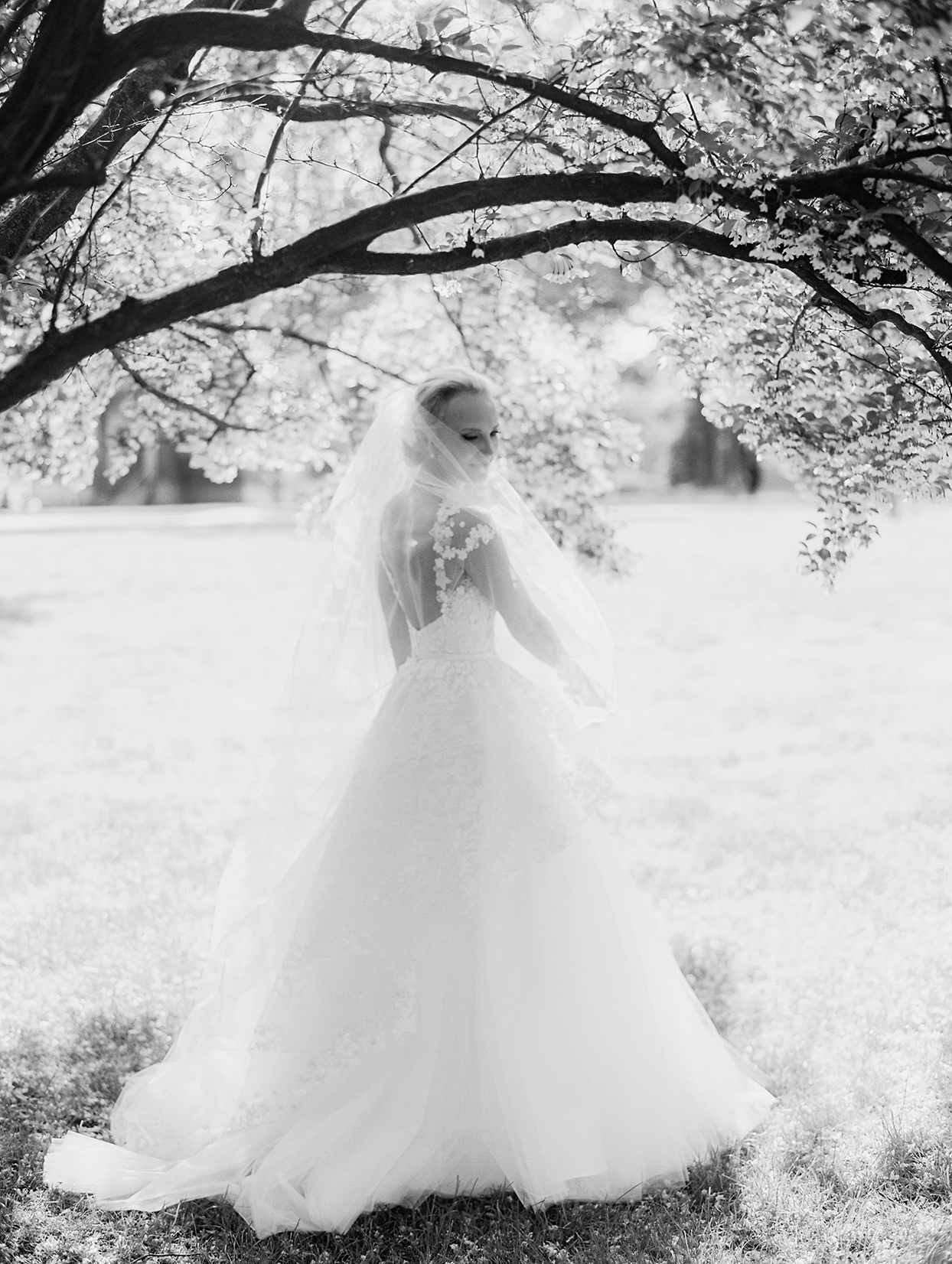 gigi kyle bride in wedding dress under tree
