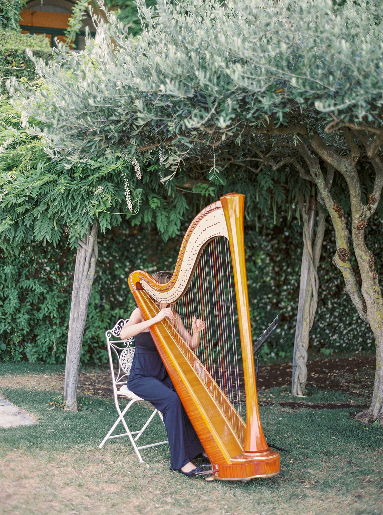 krystyna alexander wedding harpist