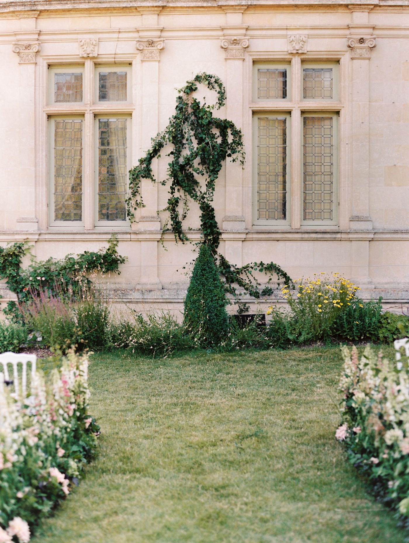 outdoor wedding space green vine growing up building