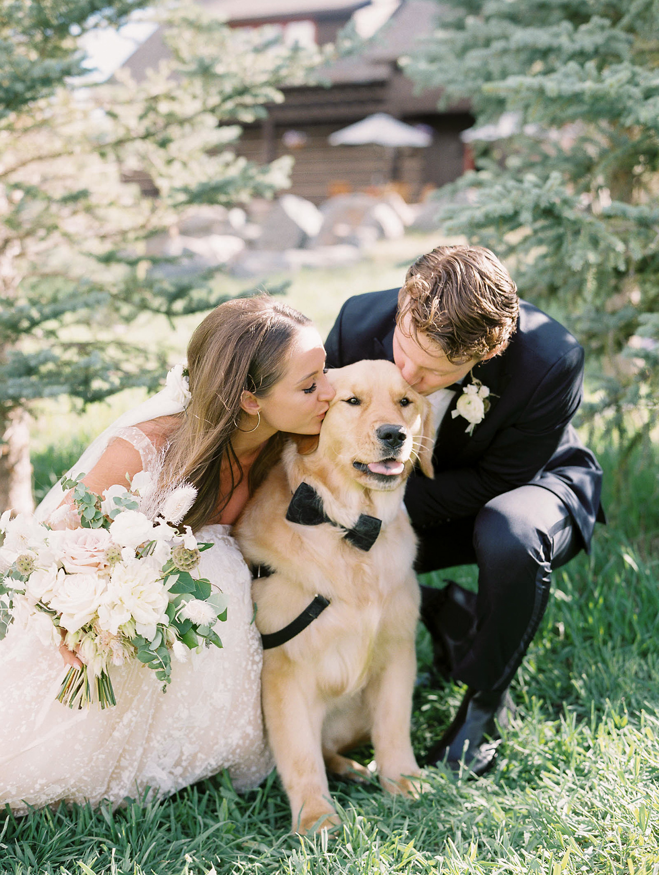 bride groom kissing golden retriever