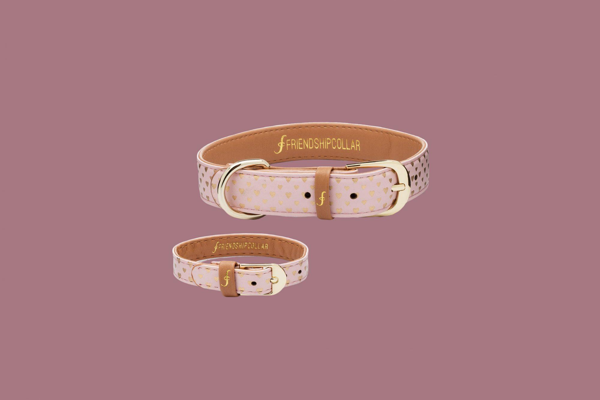 Friendship Collar Puppy Love Collar and Bracelet
