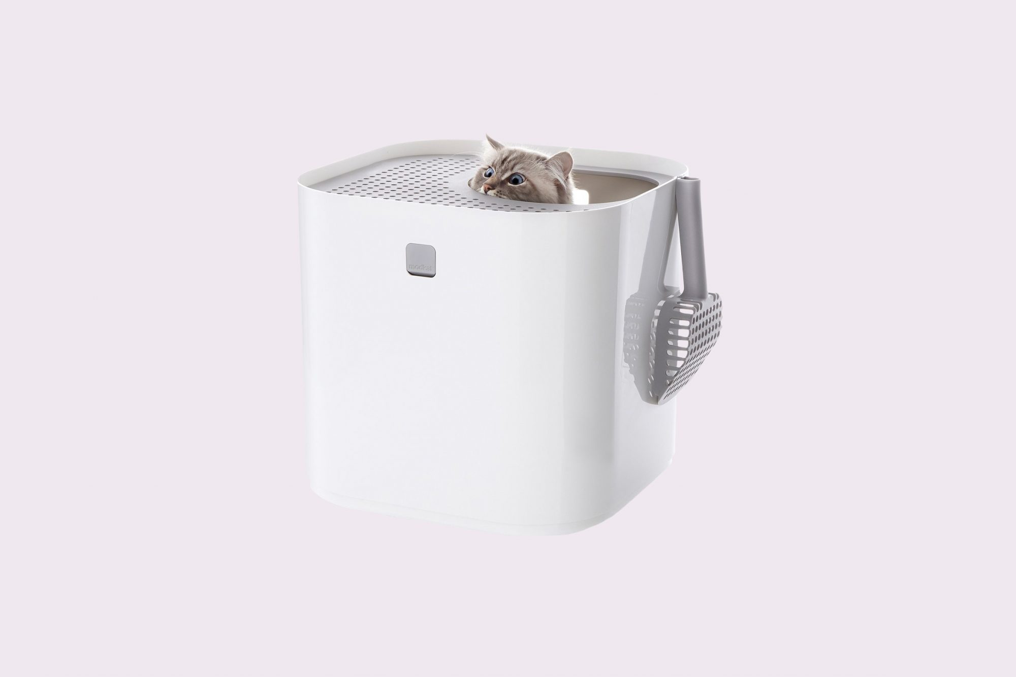 Top Entry Litter Box
